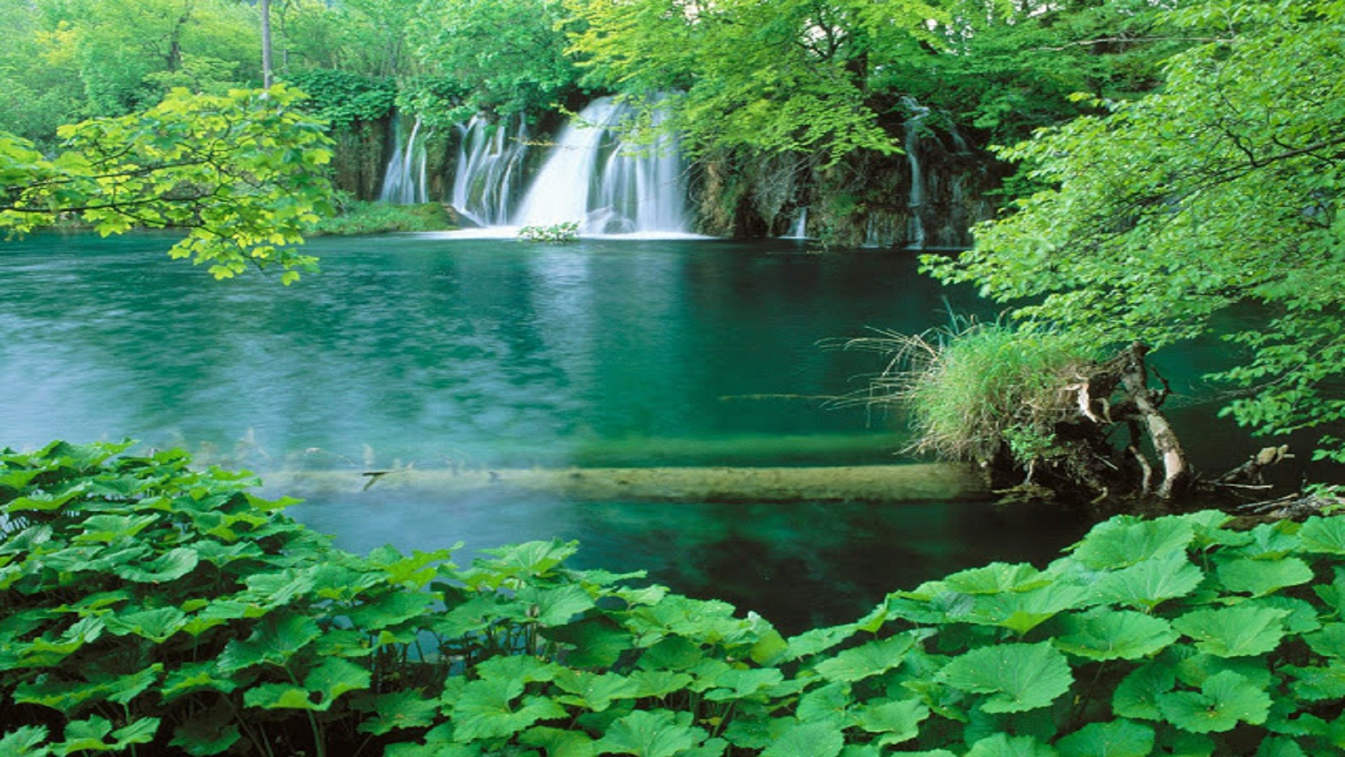 Top-10-Best-Nature-Scene-HD-wallpaper-free-