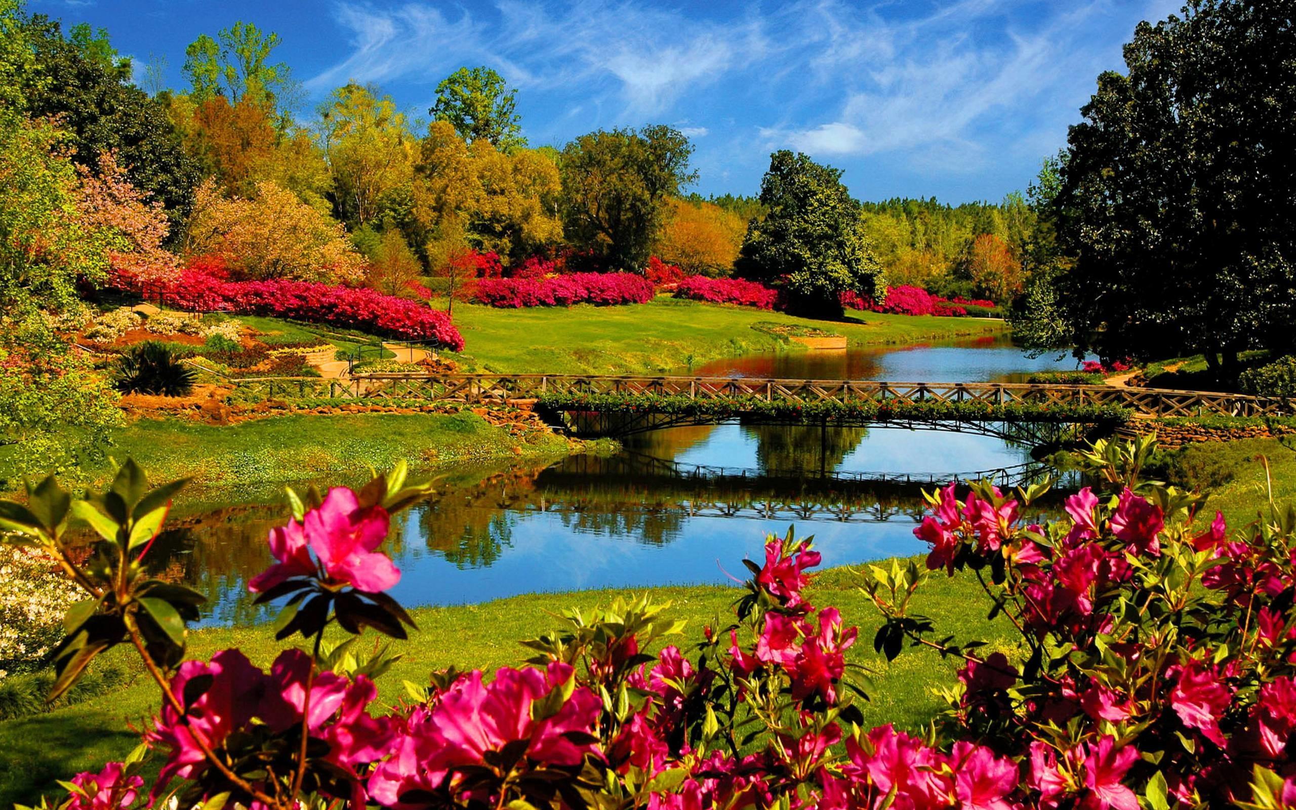 Spring Scenes Desktop Wallpapers – HD Wallpapers Backgrounds of Your .