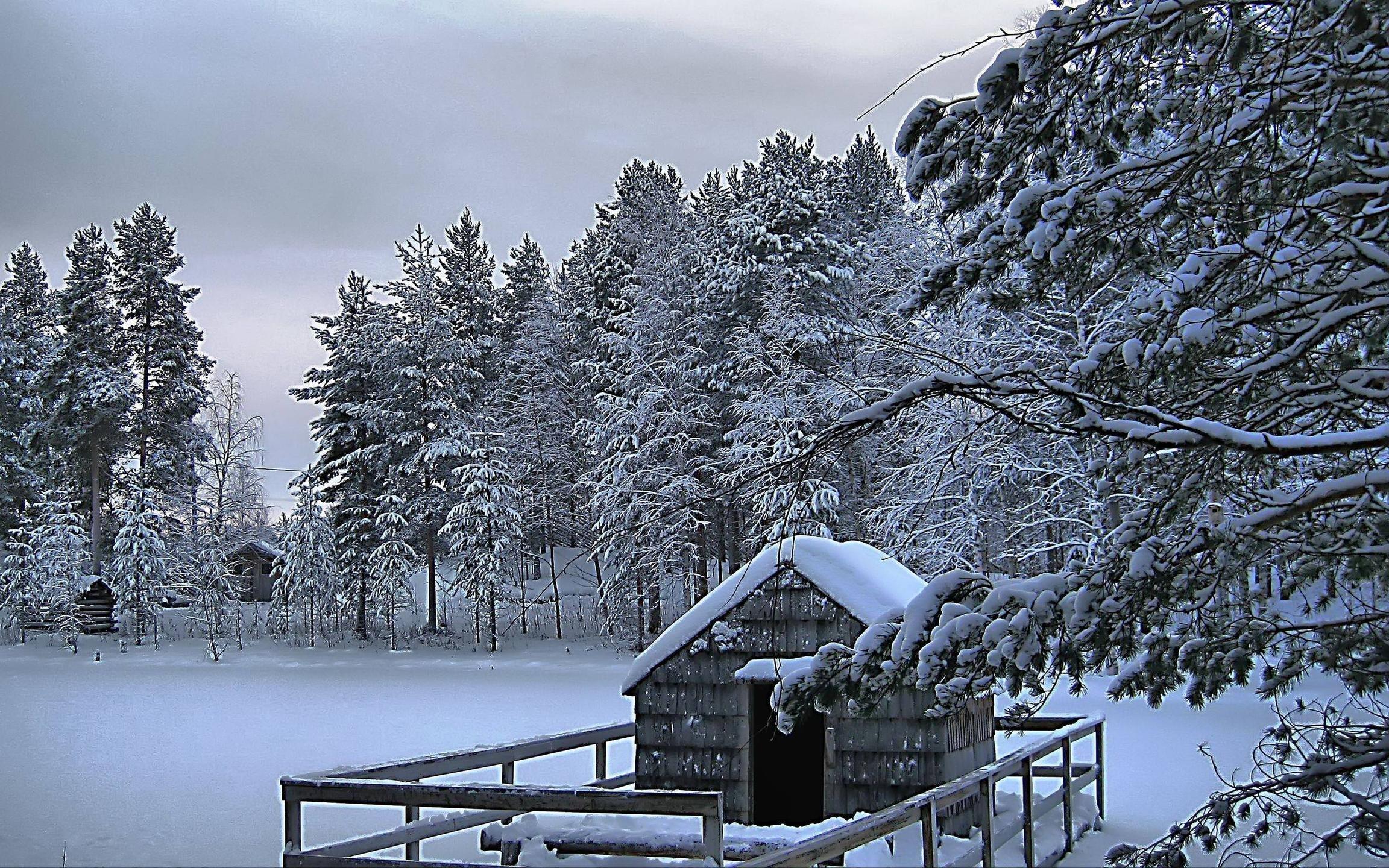 Snow Scene Wallpaper for Desktop