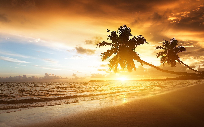 Caribbean Beach Sunrise – Bing images