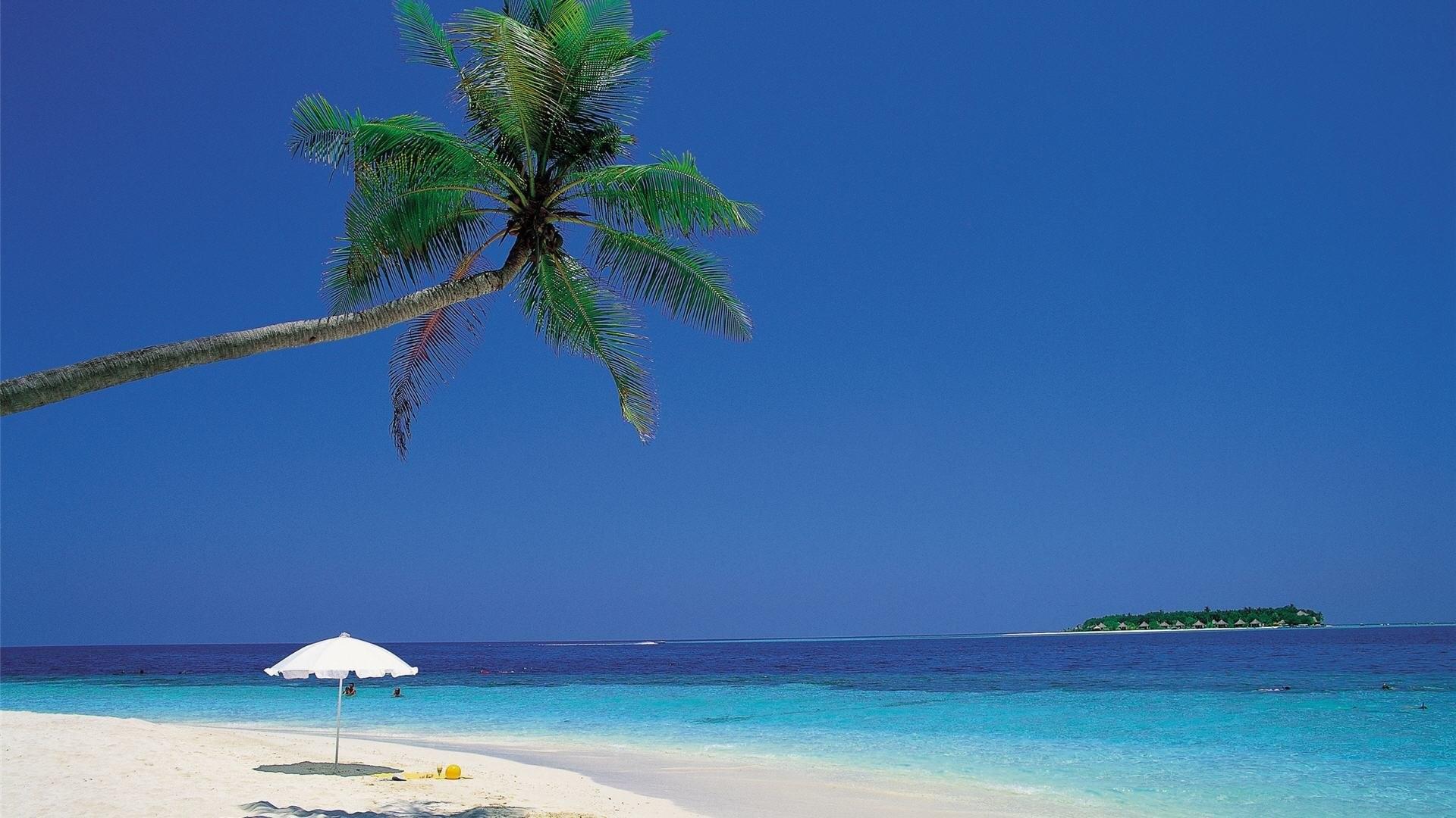 Caribbean Beach 417319