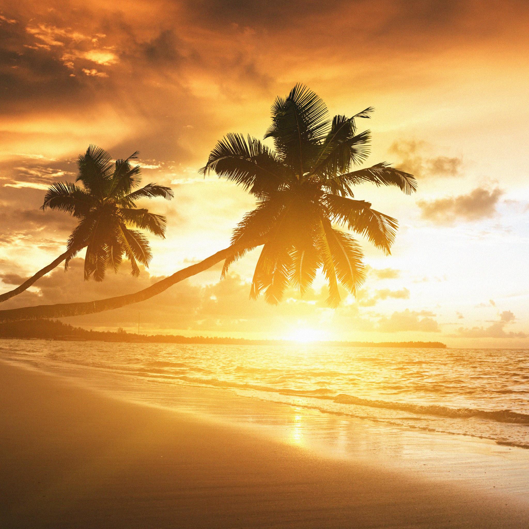 FREEIOS7 | caribbean-coast – parallax HD iPhone iPad wallpaper