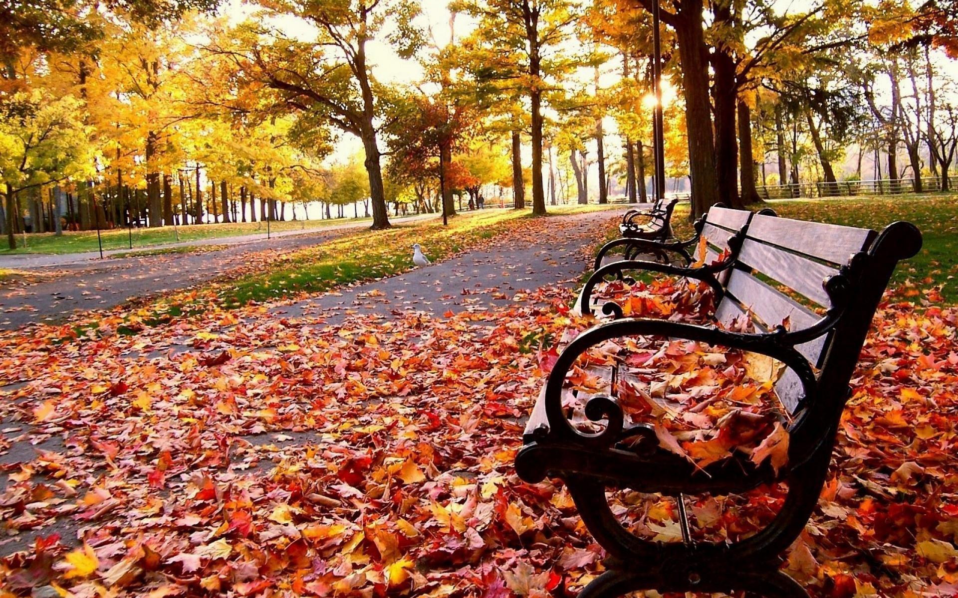 Autumn-Tumblr-HD-py-1920x-px-MB-Nature-
