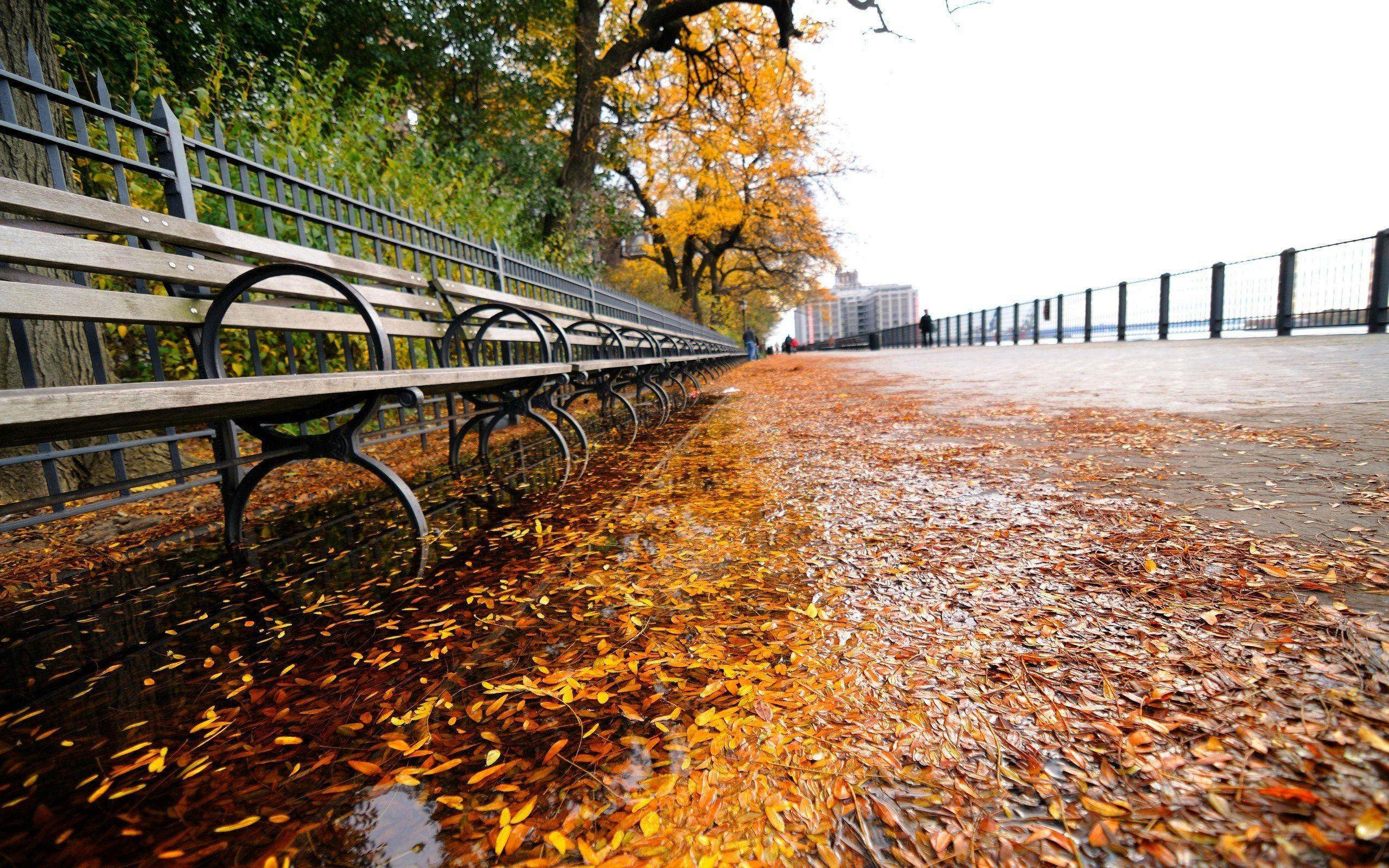 #Autumn #new-york (2560×1600) #desktop #wallpaper #background | Backgrounds,  Wallpapers | Pinterest | Wallpaper backgrounds and Wallpaper