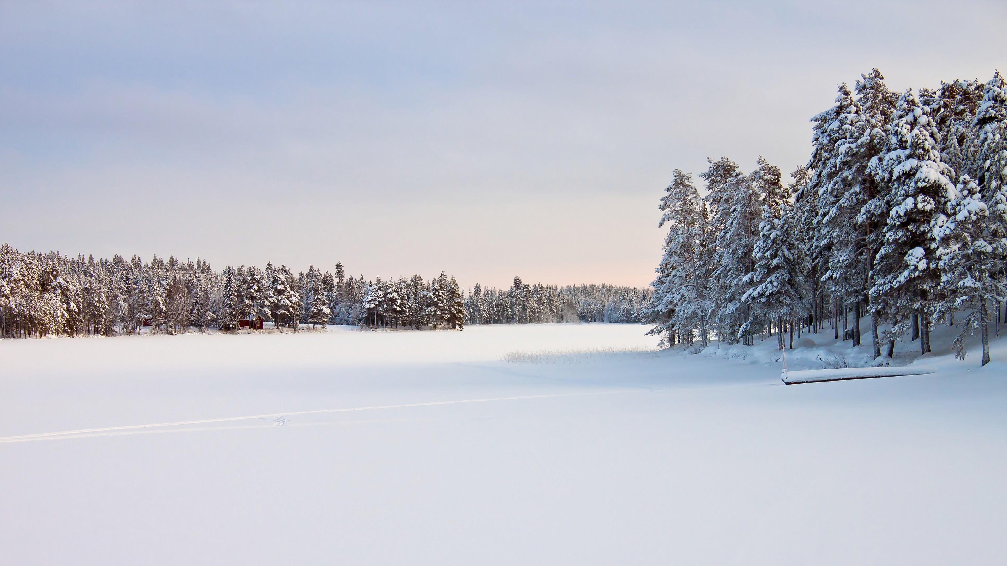 Earth – Winter Wallpaper