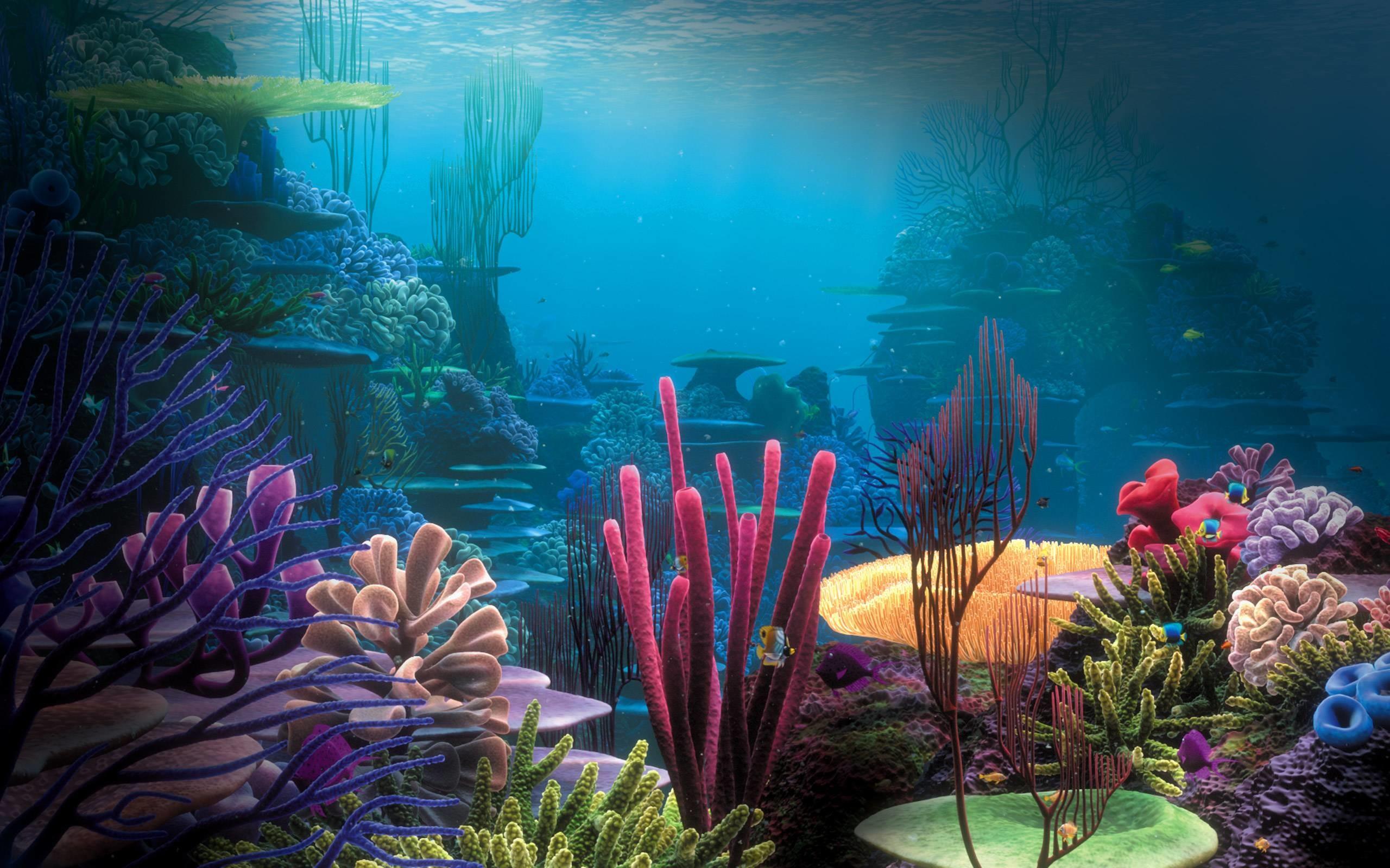 Ocean Underwater Wallpaper HD Free Download.