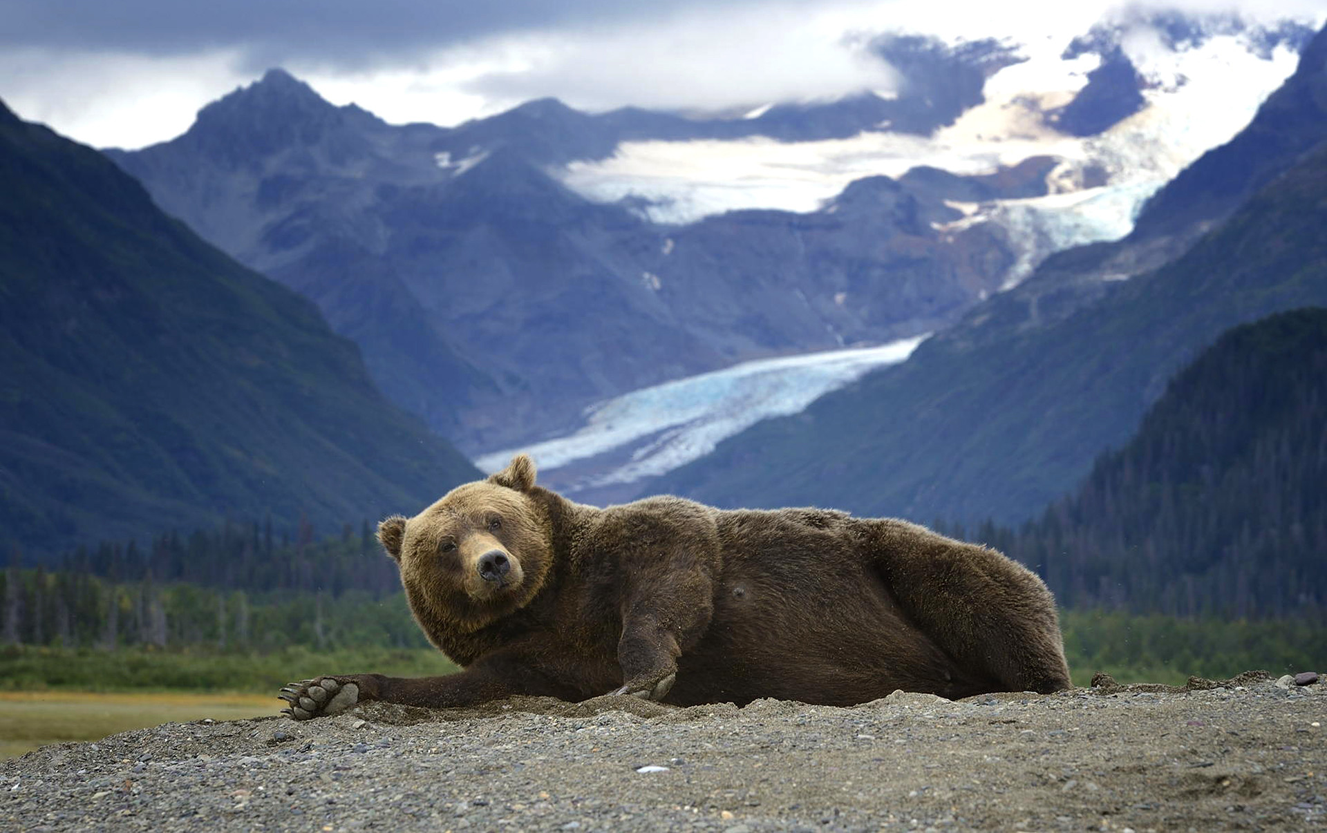 Alaska Wallpaper Screensaver