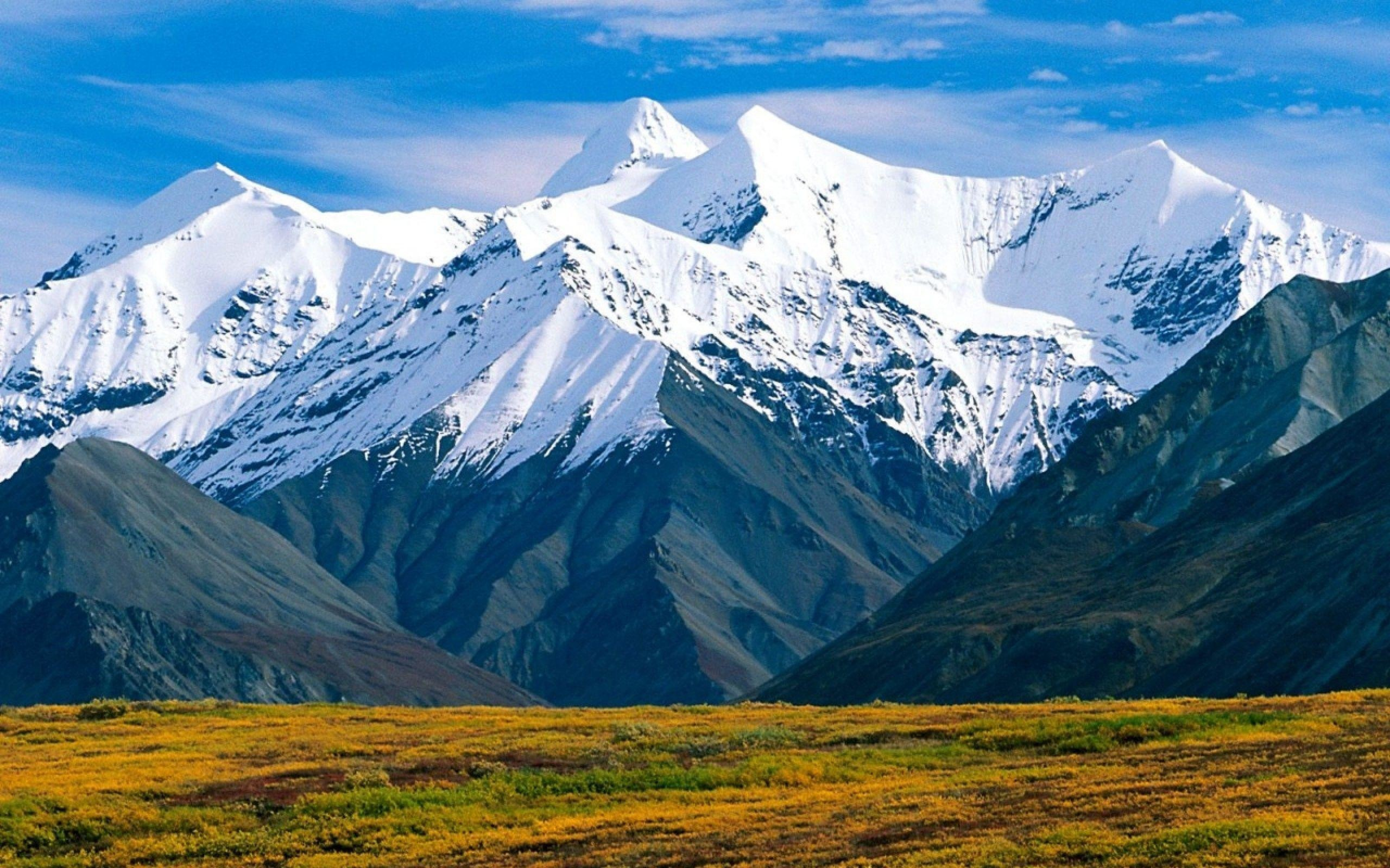 Park With The Alaska Range And Mt Mckinley In The Alaska