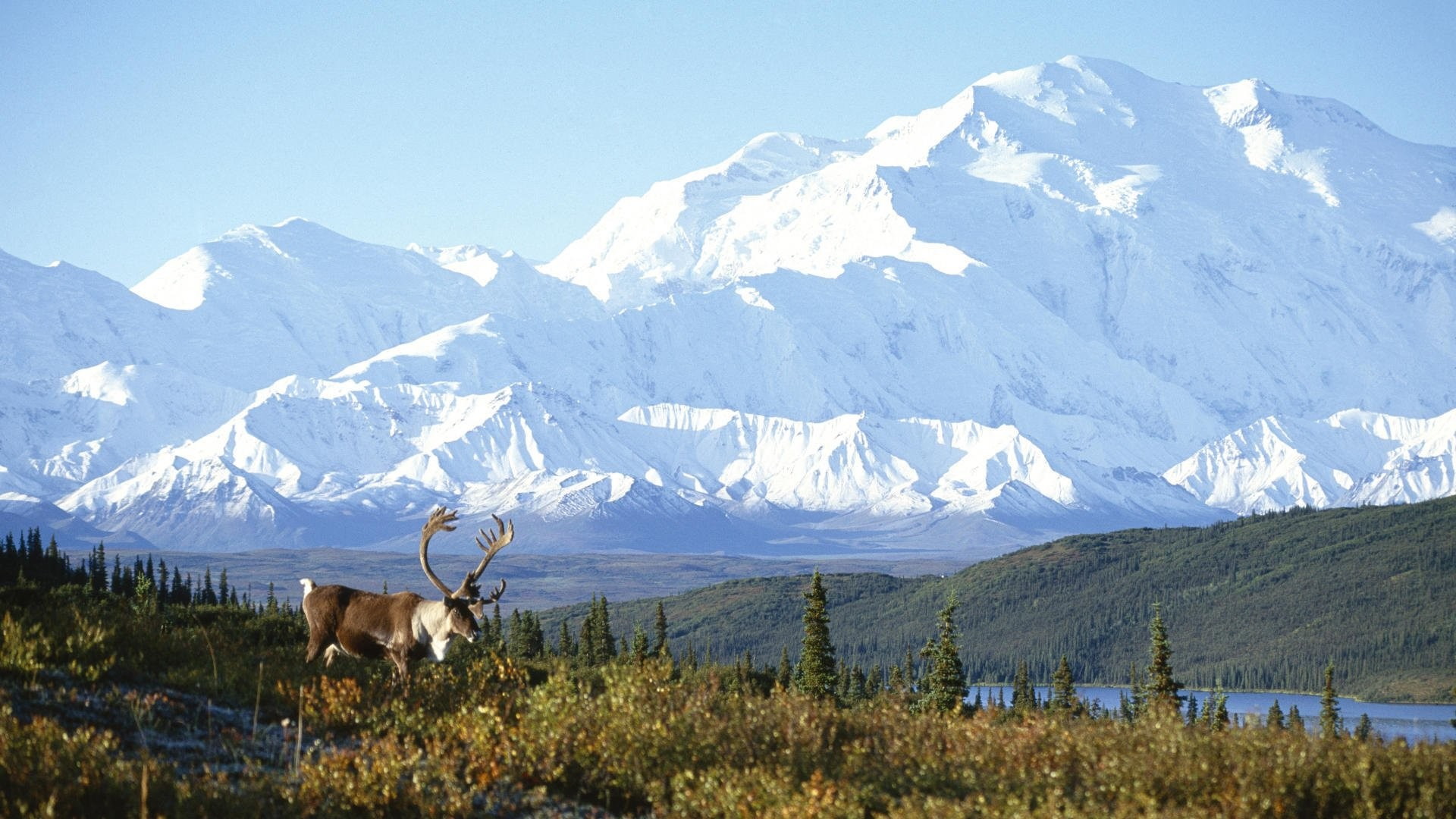 Alaska Wallpaper (56 Wallpapers)
