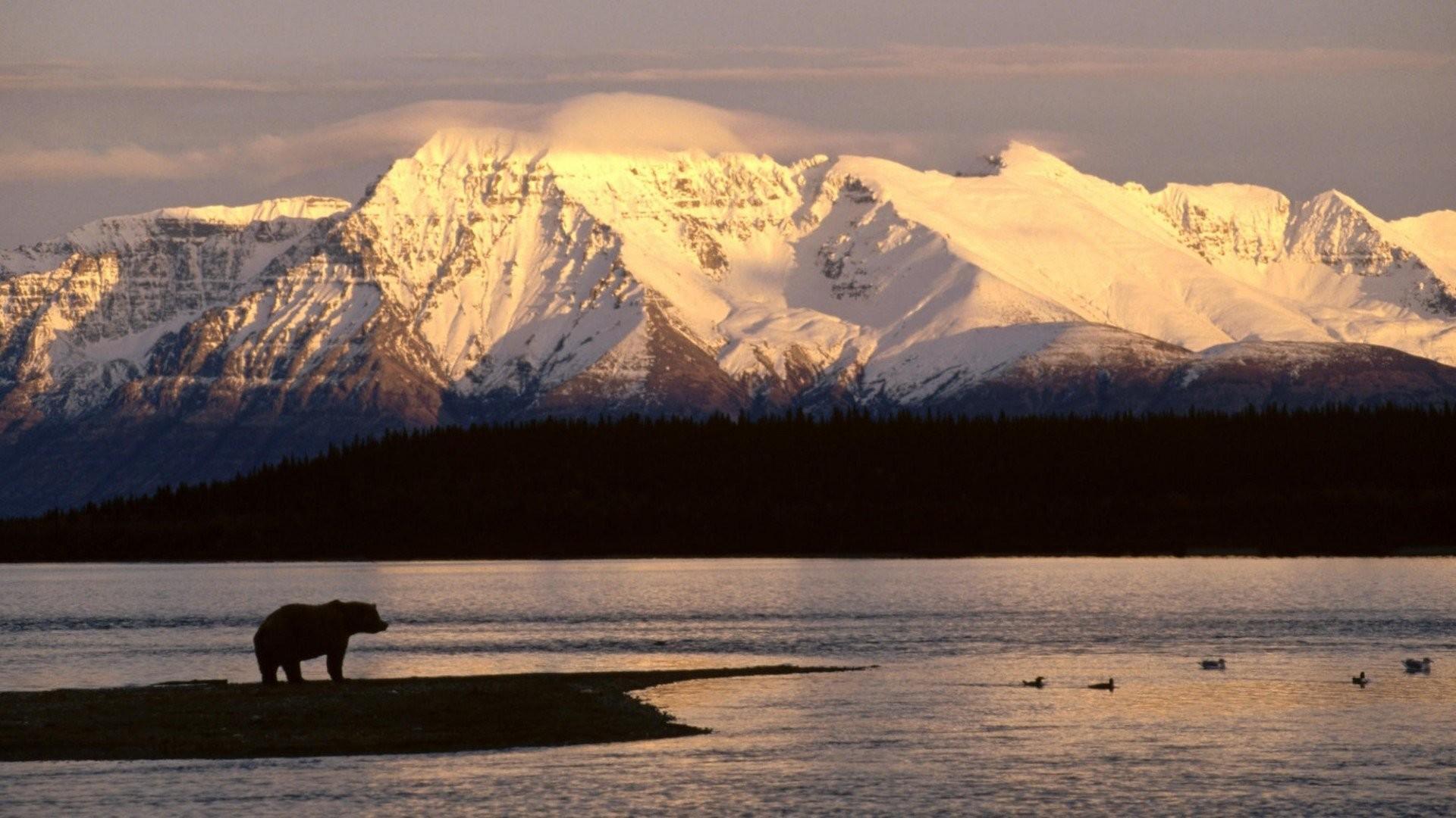 1 Alaska Wallpaper Alaska Wallpaper
