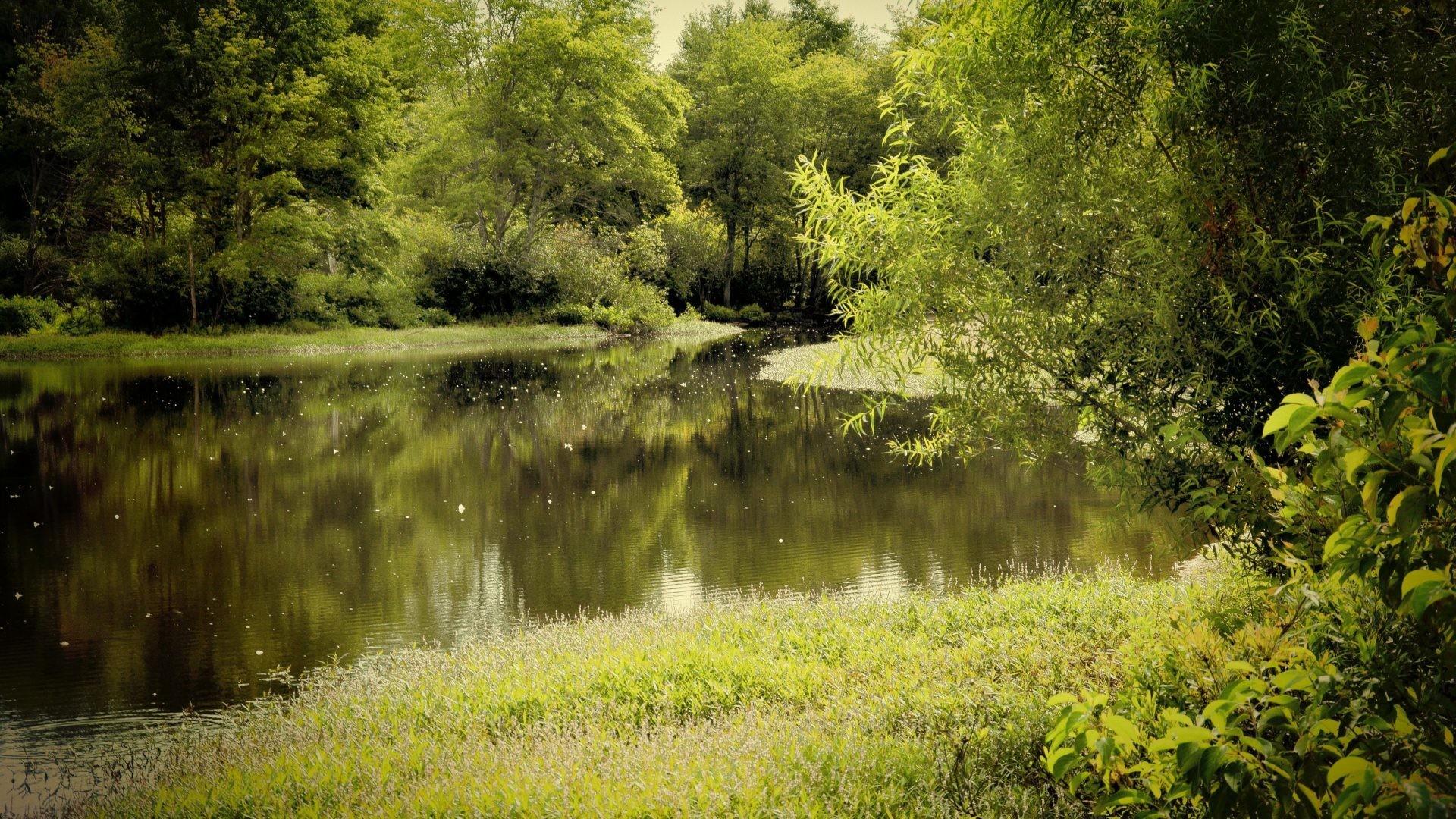 Rivers – River Landscape Trees 3d Nature Screensavers Desktop for HD 16:9  High Definition