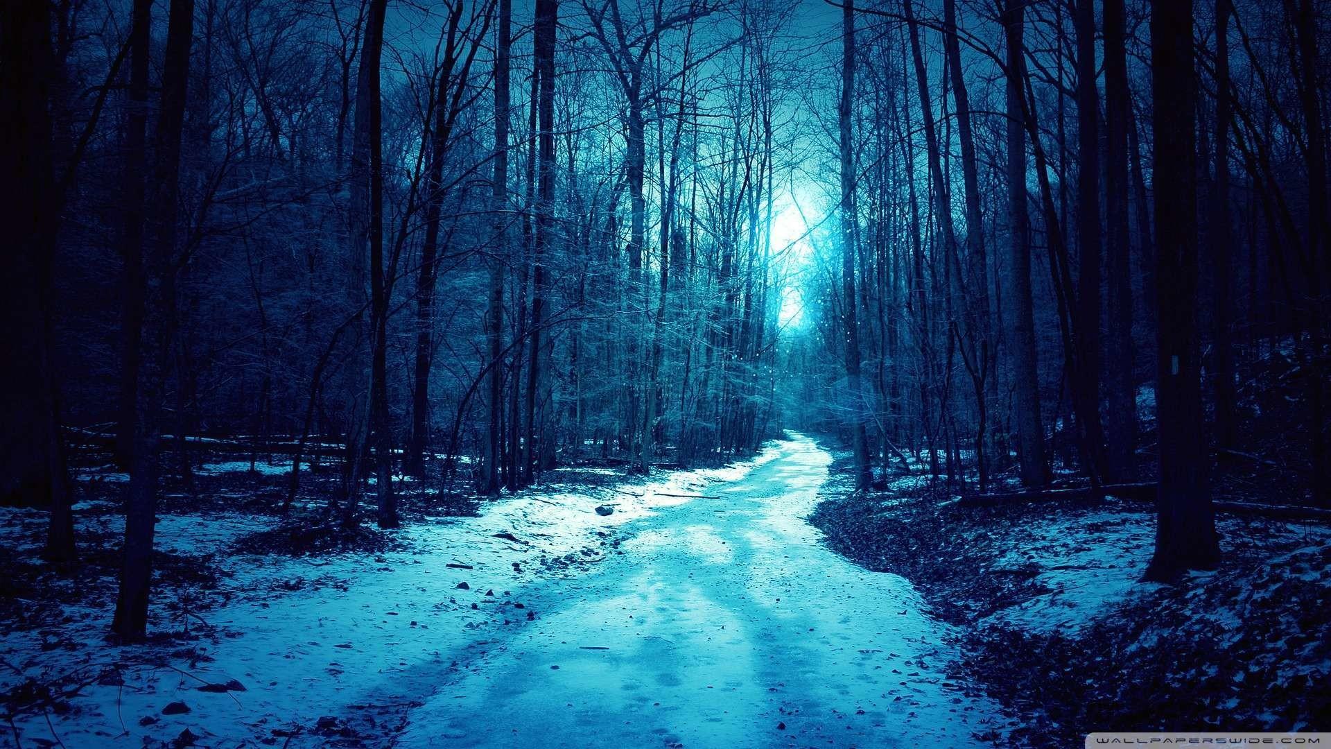 Download now: Cold Winter Day Wallpaper 1080p HD. Read description .