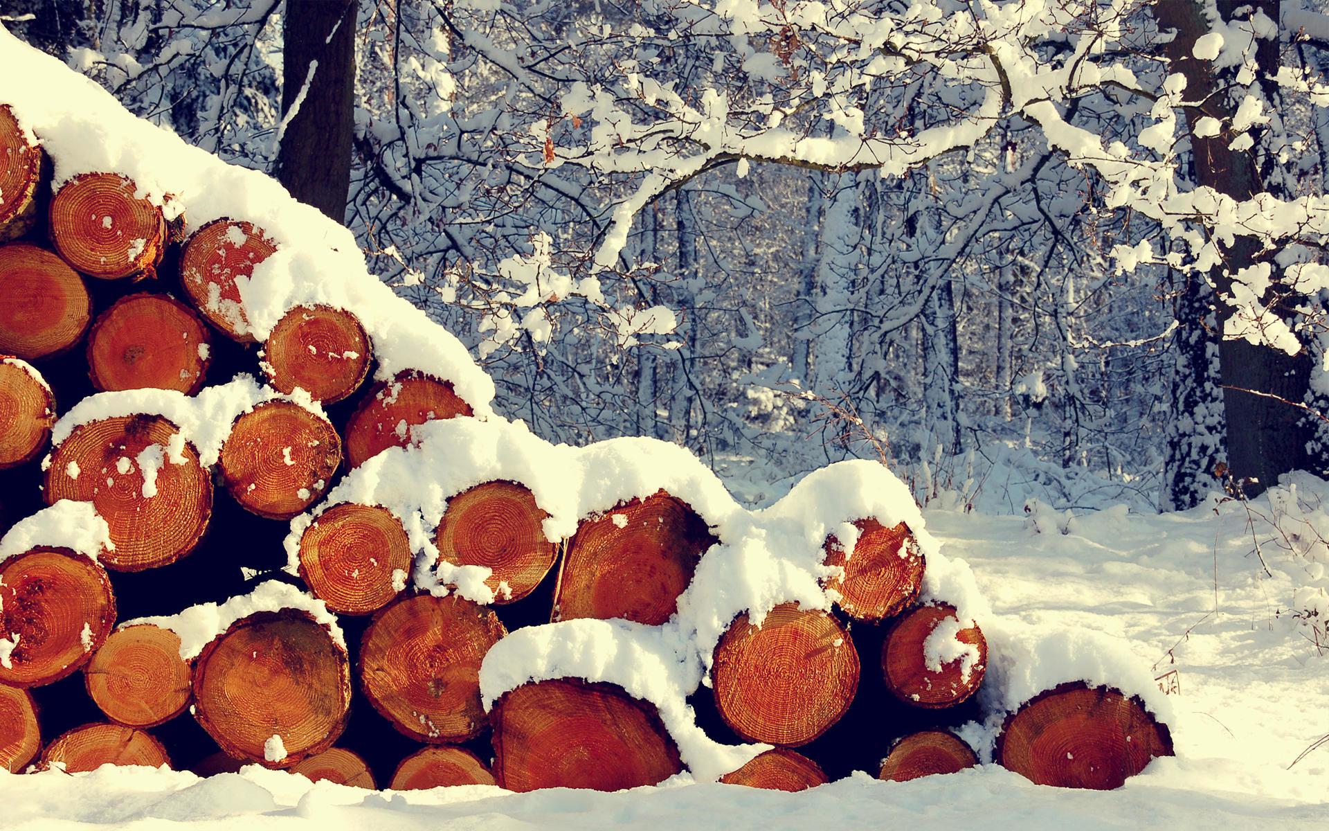 Winter Comes HD Wallpaper