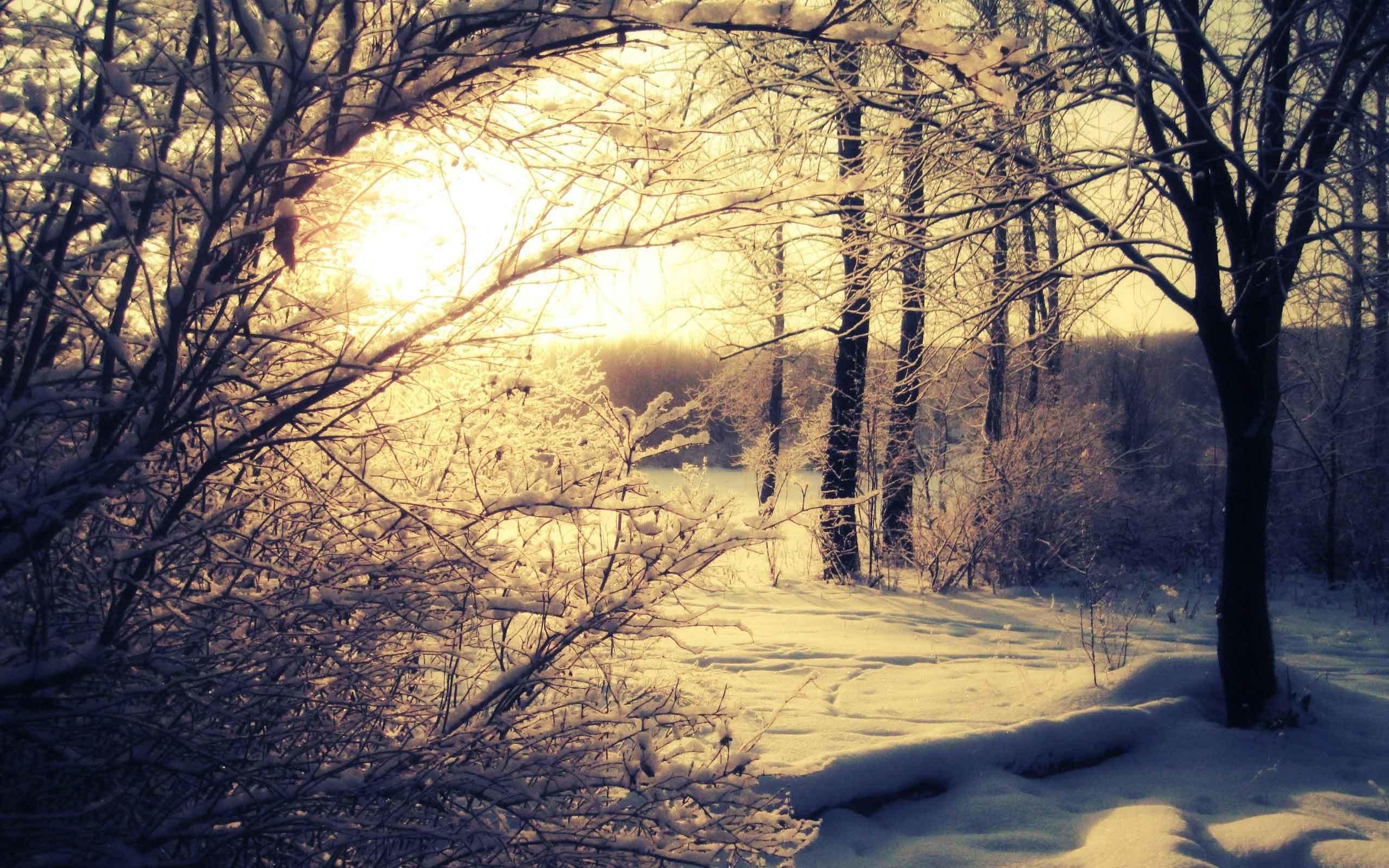 Sunrise Sunset Snow Landscape Winter Nature Wallpaper HD For Mobile 1080p