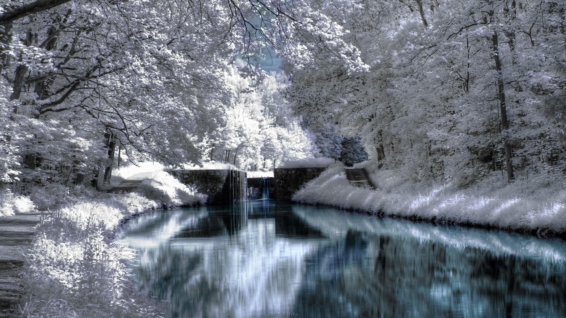 … Celebration Winter Wallpaper Desktop Wallpapers Hd 1080p