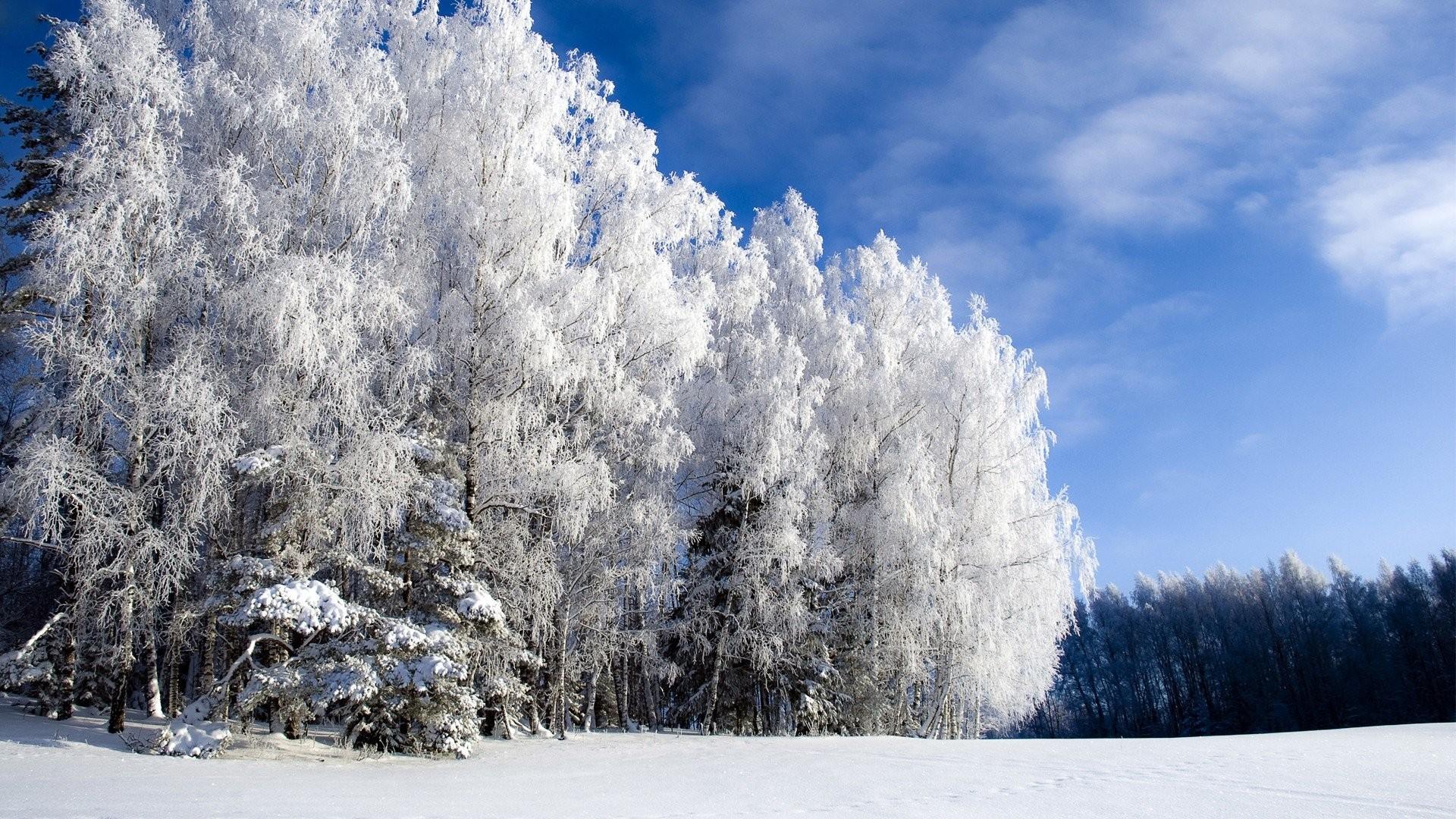 HD Winters 1080p 895909