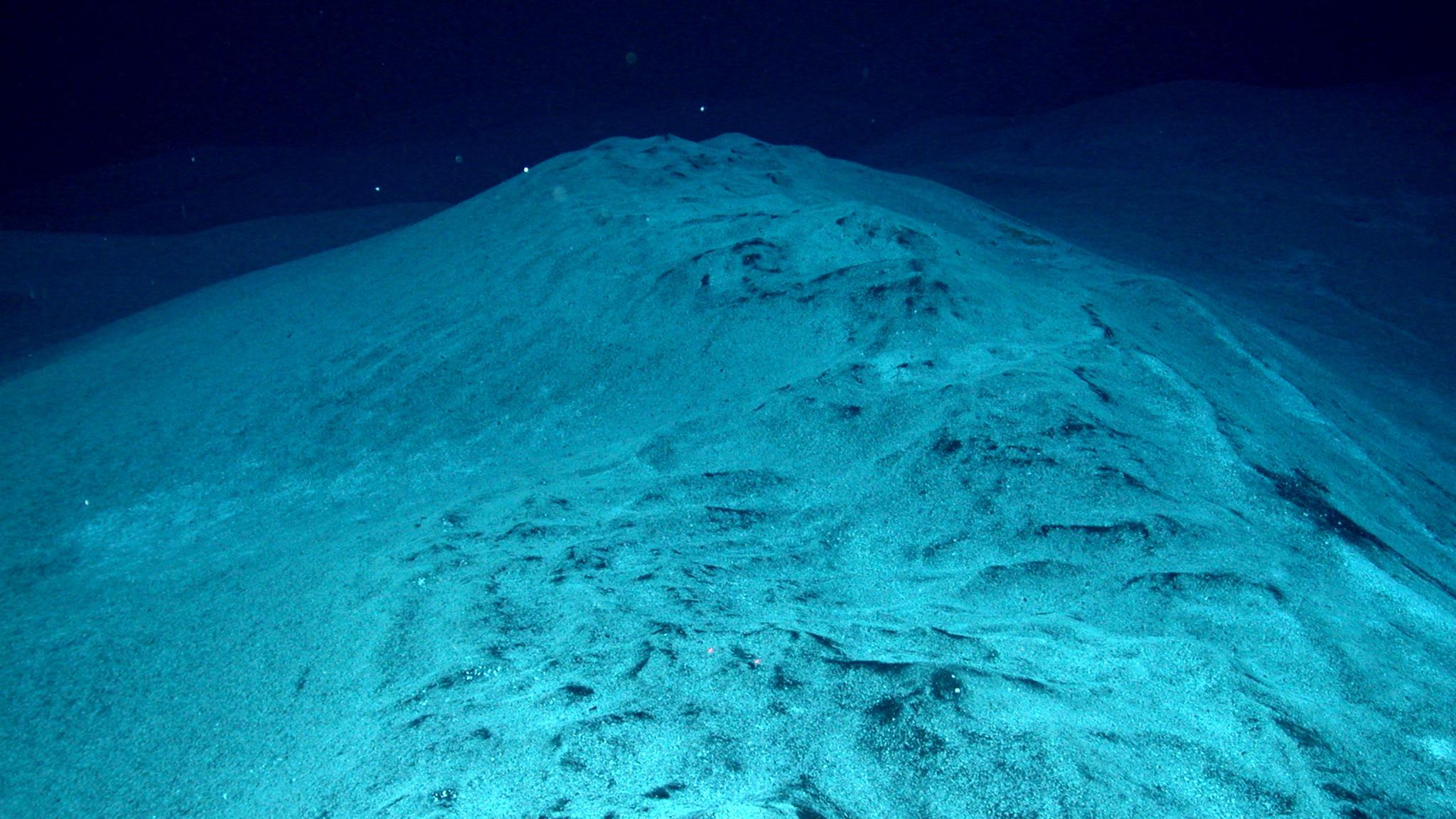Did Microbes Cause The Worst Mass Extinction Ever? U2014 NOVA Next   PBS
