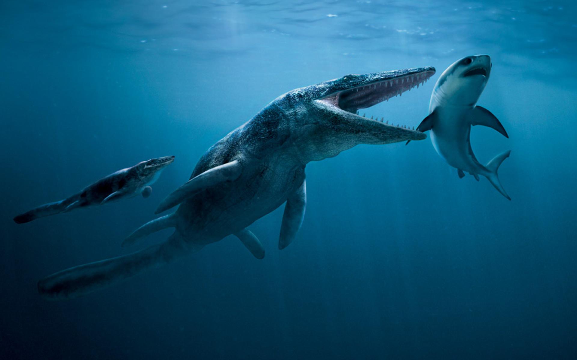 Dinosaur Wallpaper #4: Prehistoric Ocean Floor