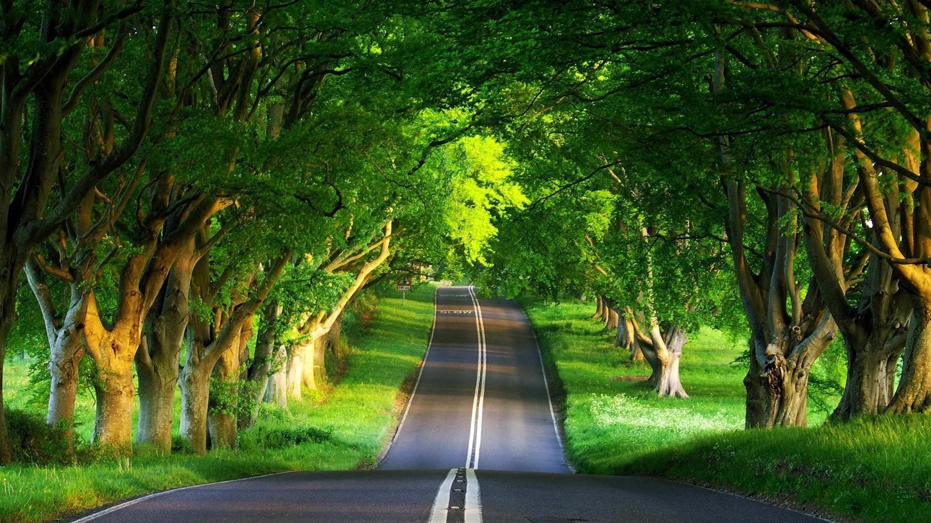 Beautiful Scenery Wallpaper Desktop Wallpaper   scenery desktop wallpapers  natural beautiful road summer wallpaper .