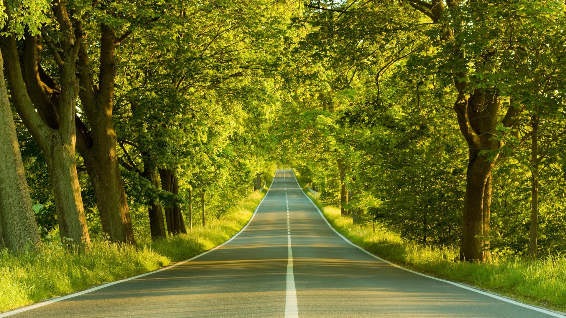 Full HD p Nature Wallpapers, Desktop Backgrounds HD, Pictures H D Wallpaper  Nature Wallpapers)