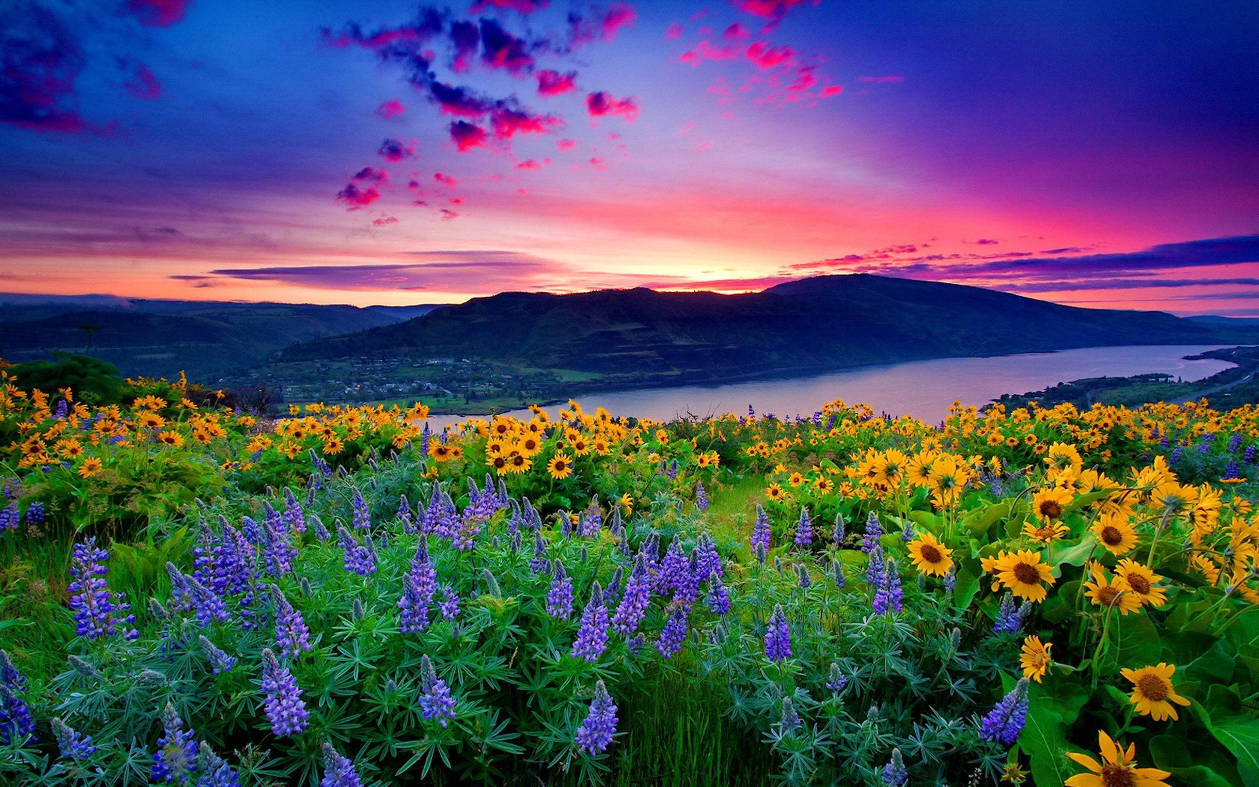 Beautiful Scenery Pics, Beautiful Scenery Wallpapers for Desktop .