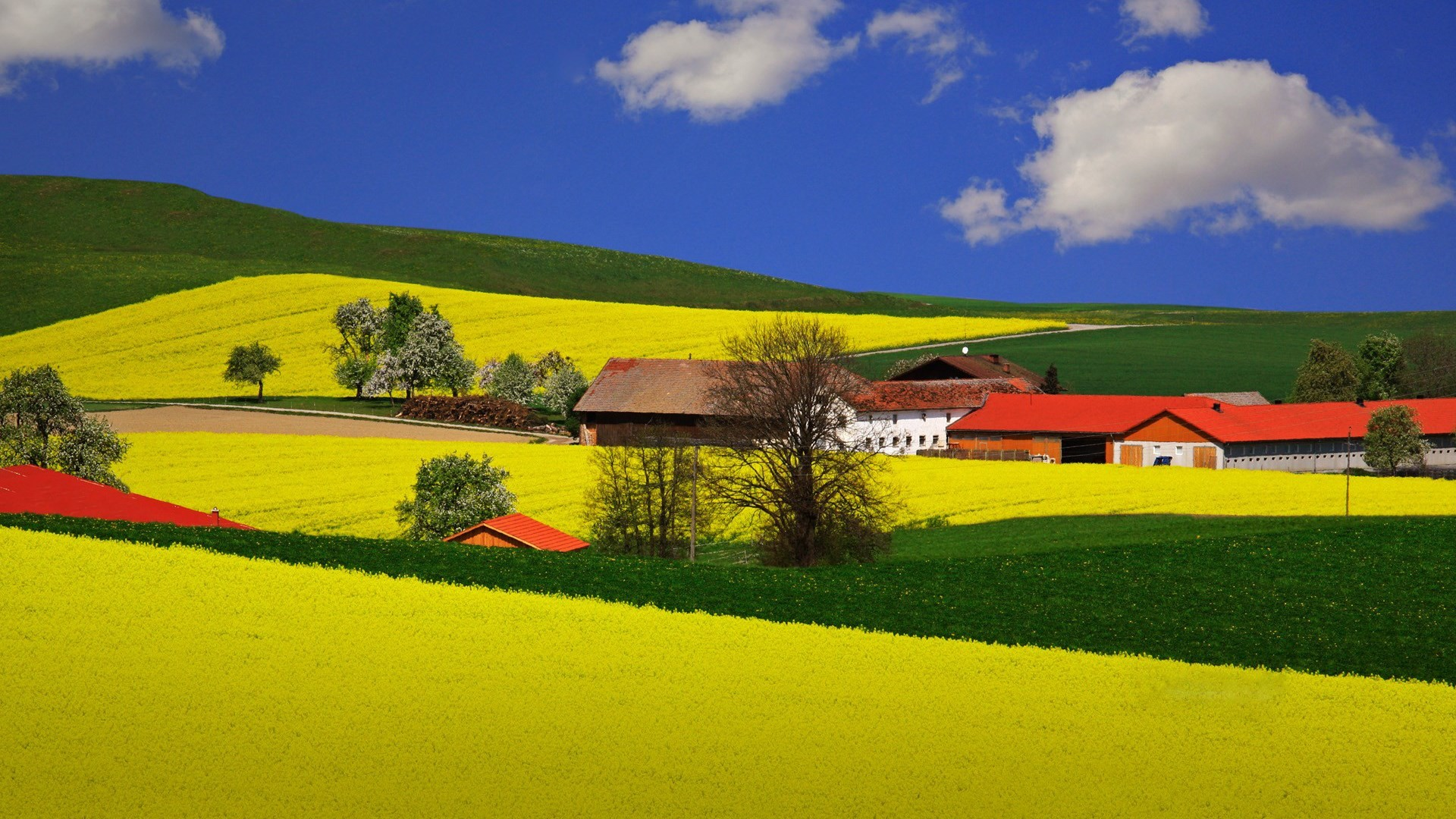 wallpaper desktop scenic – scenic category