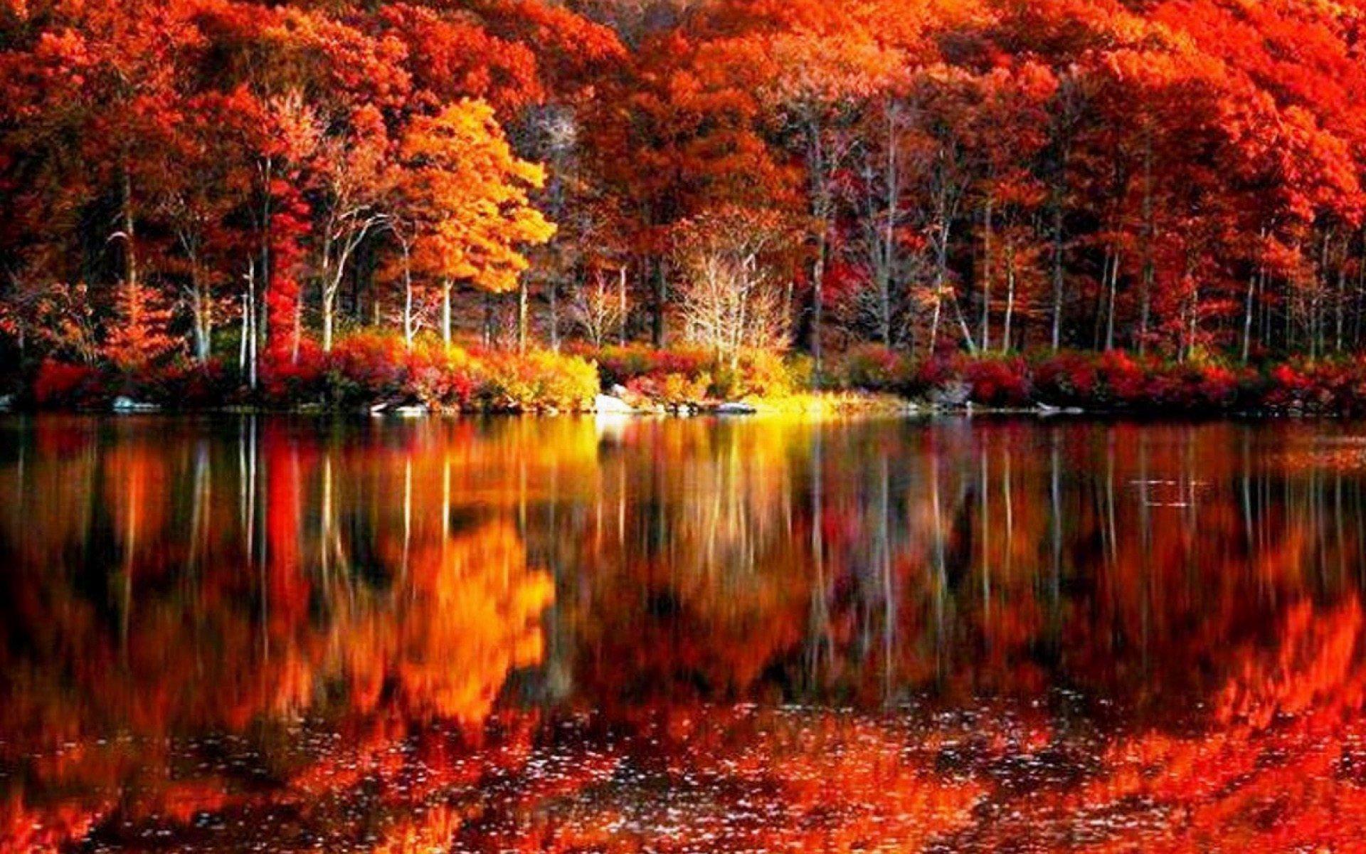 Fall-Scenery-HD-Wallpaper