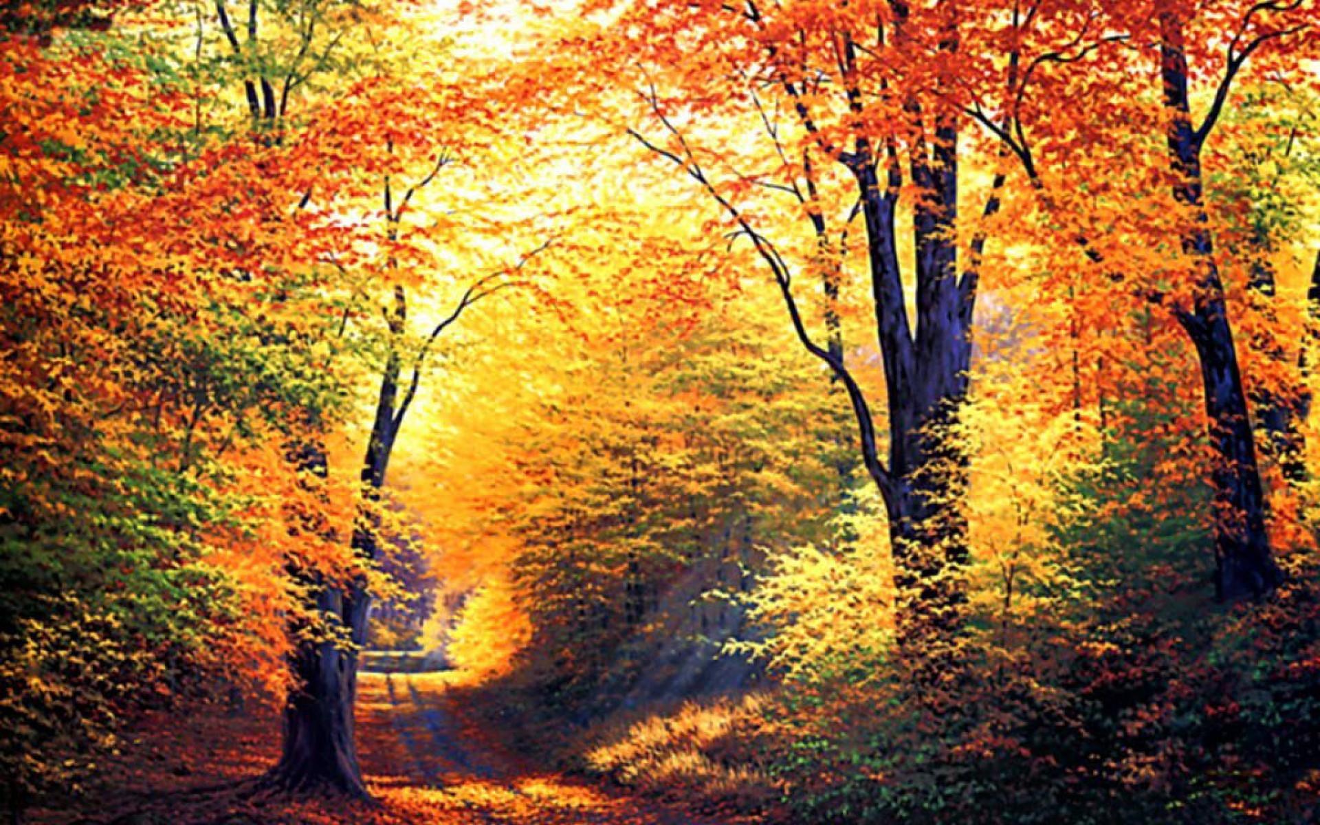 Free Fall Screensavers wallpaper – 758634