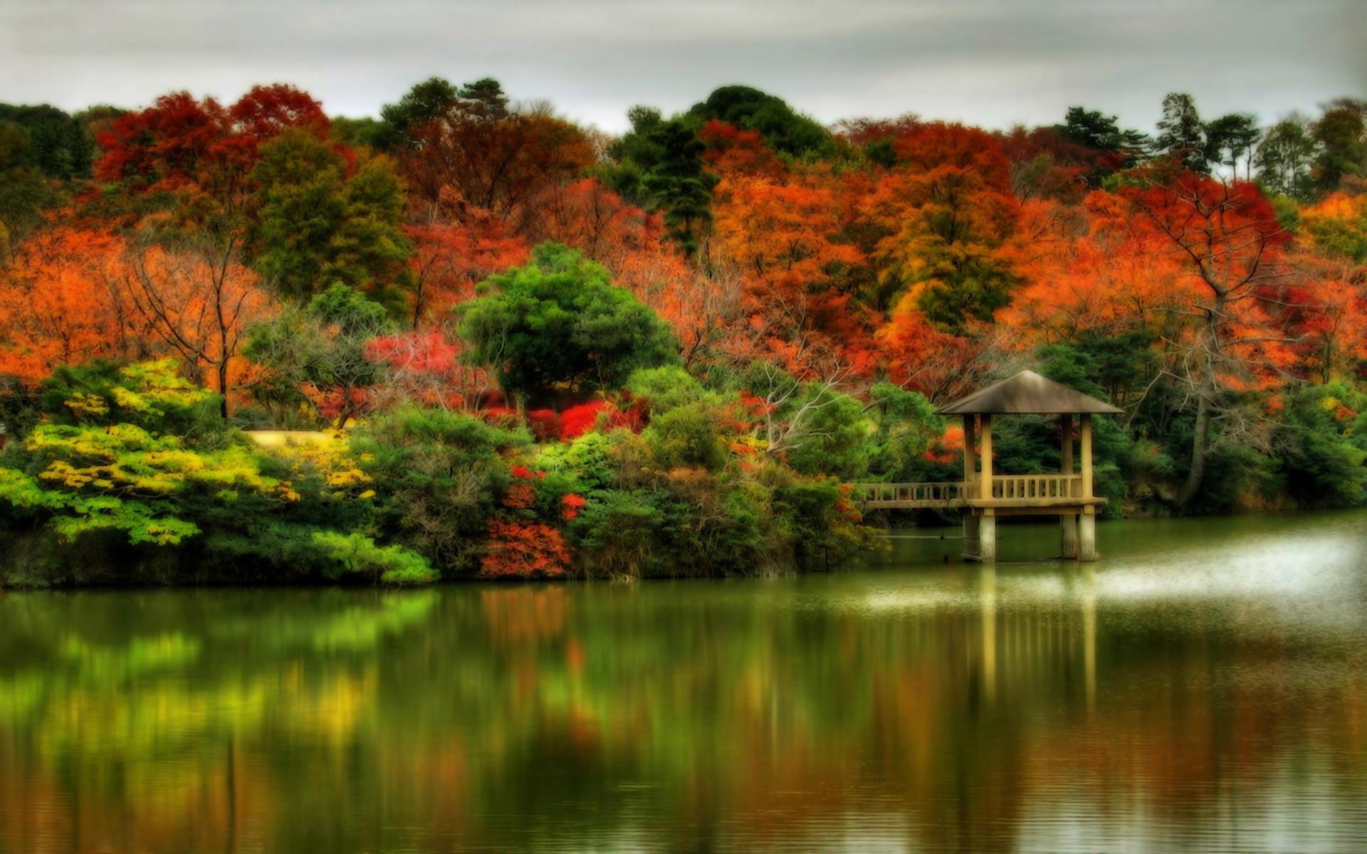 Screensavers and Wallpaper Autumn Scene
