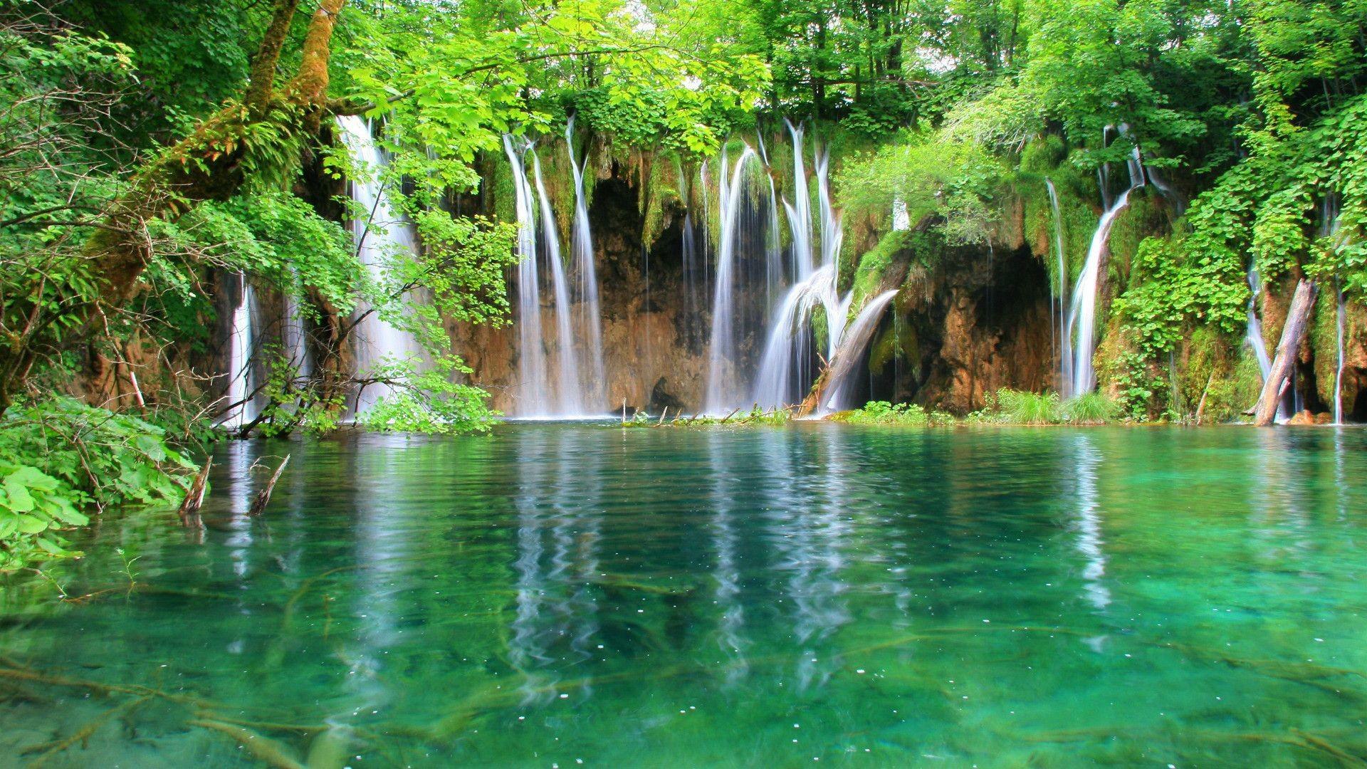 green tree waterfall image