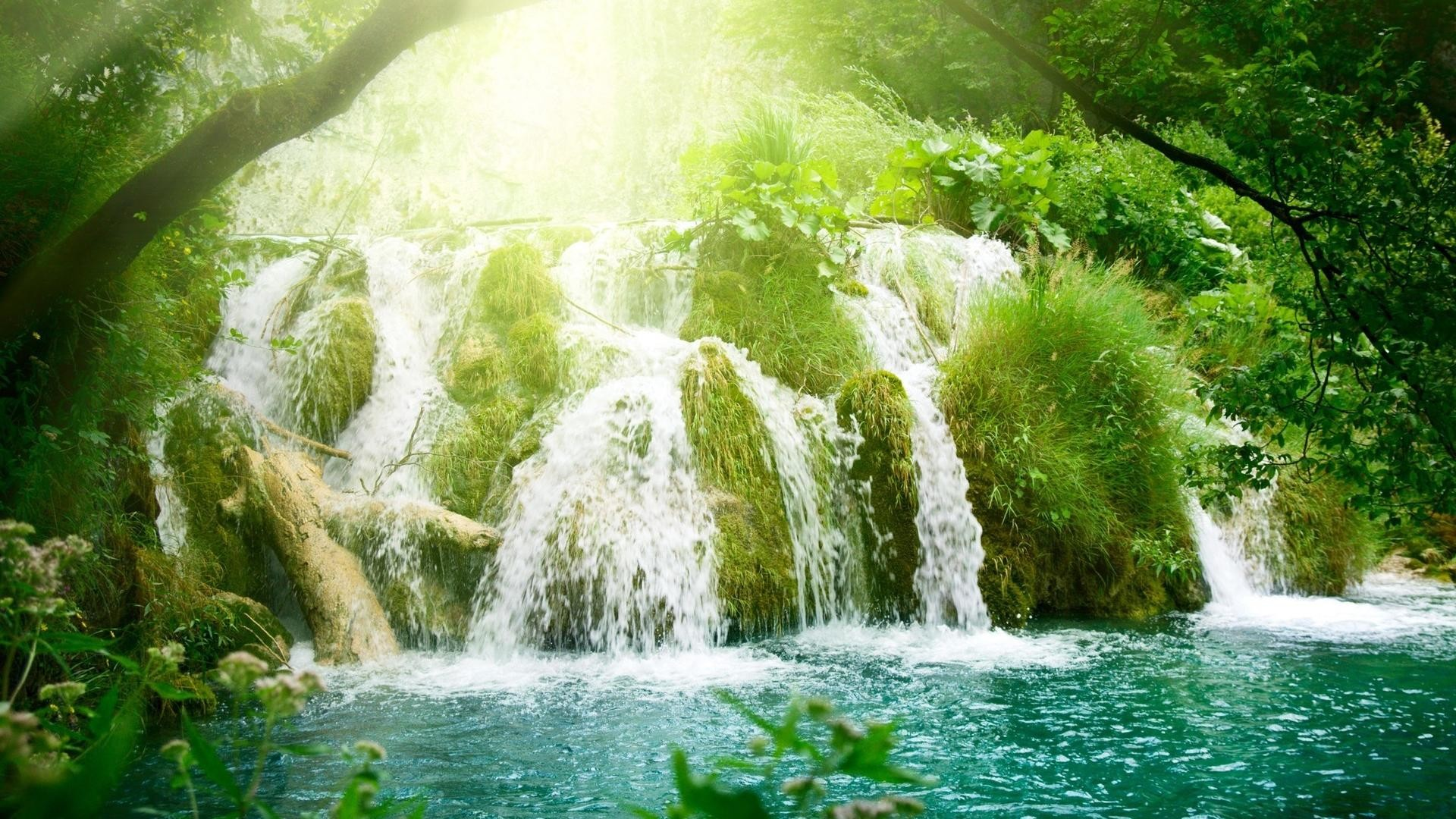 Amazing Forest waterfall and rivers background