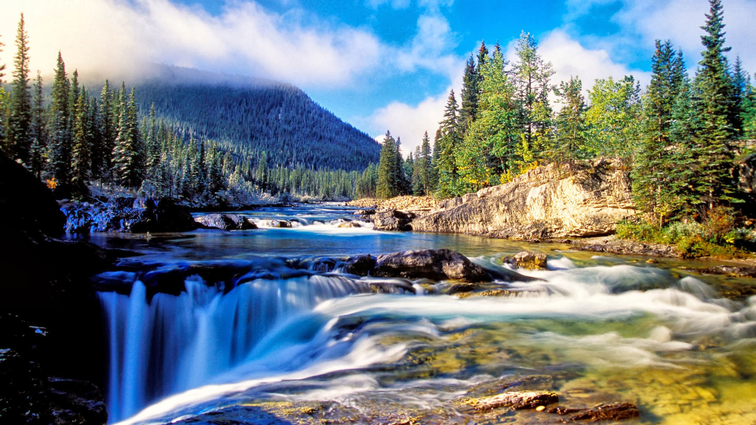 Nature Mountain Dense Spruce Forest, River Rock Waterfall Background :  Wallpapers13.com