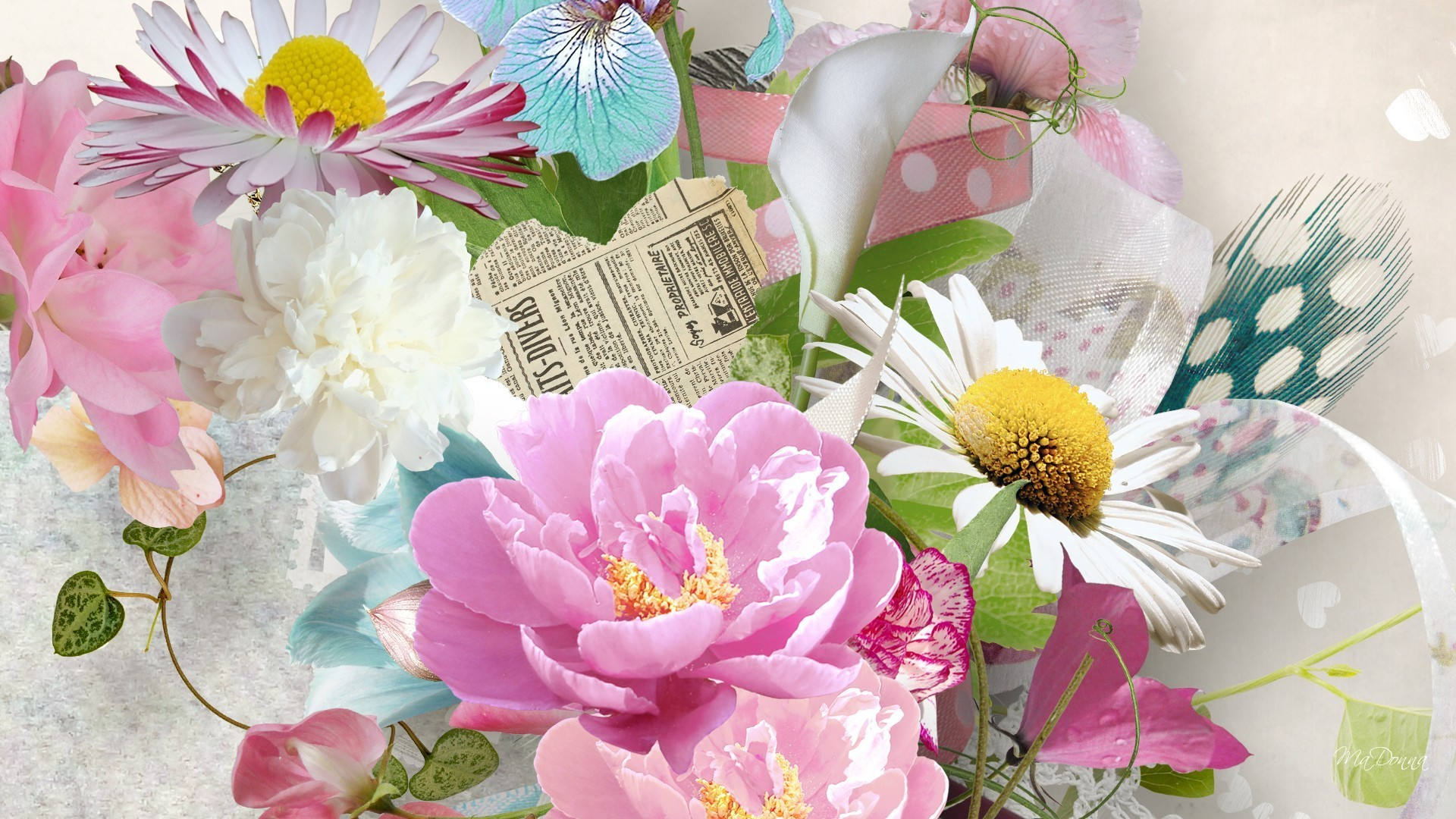 Soft Tag – Daisy Feathers Flowers Newspaper Pink Iris Floral Summer Ribbon  Peony Heart Soft Screen