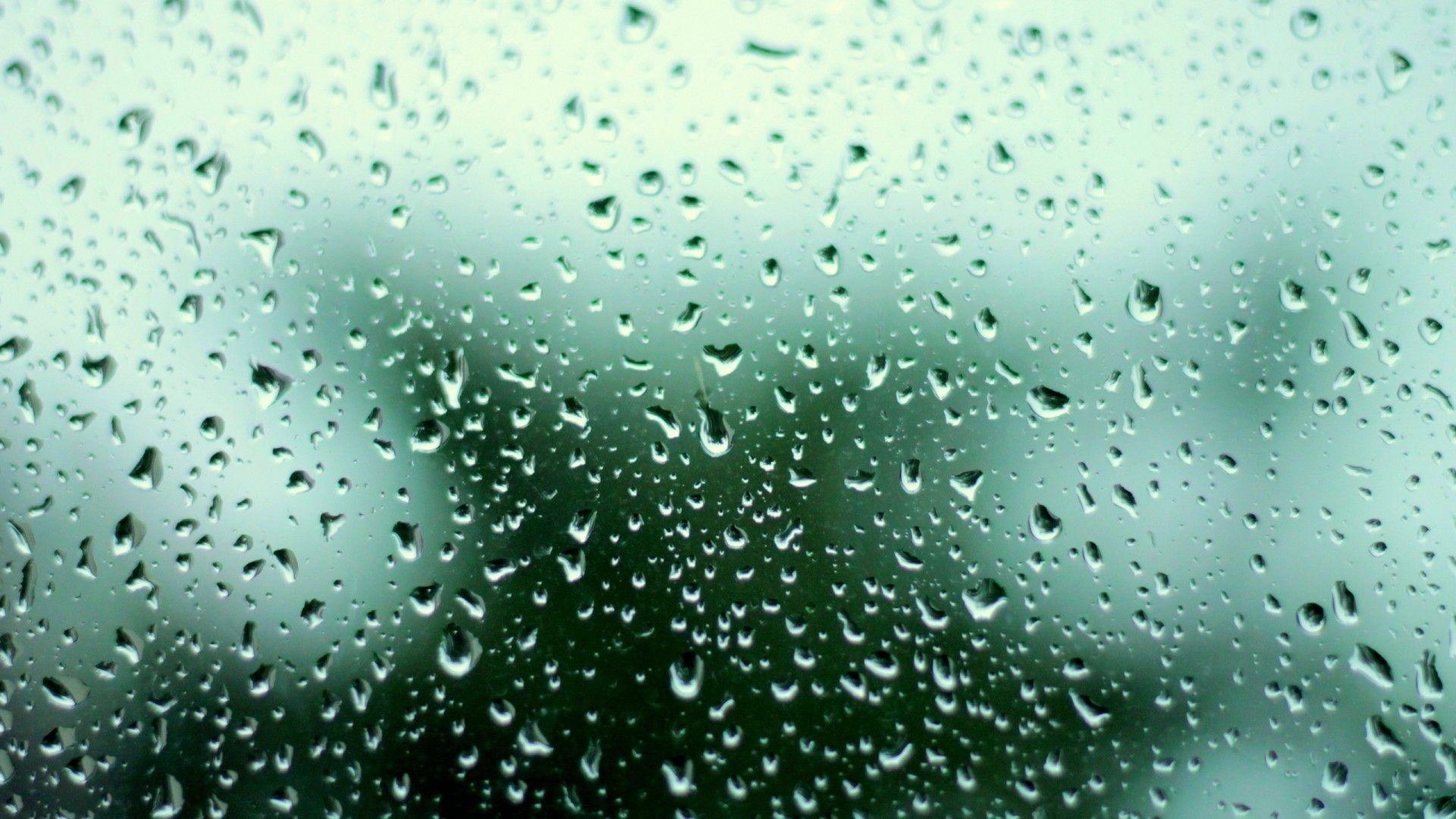 Spring Rain Desktop Wallpaper