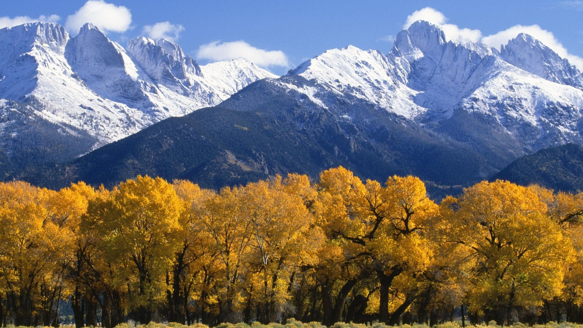 Colorado Fall Scenery – wallpaper.