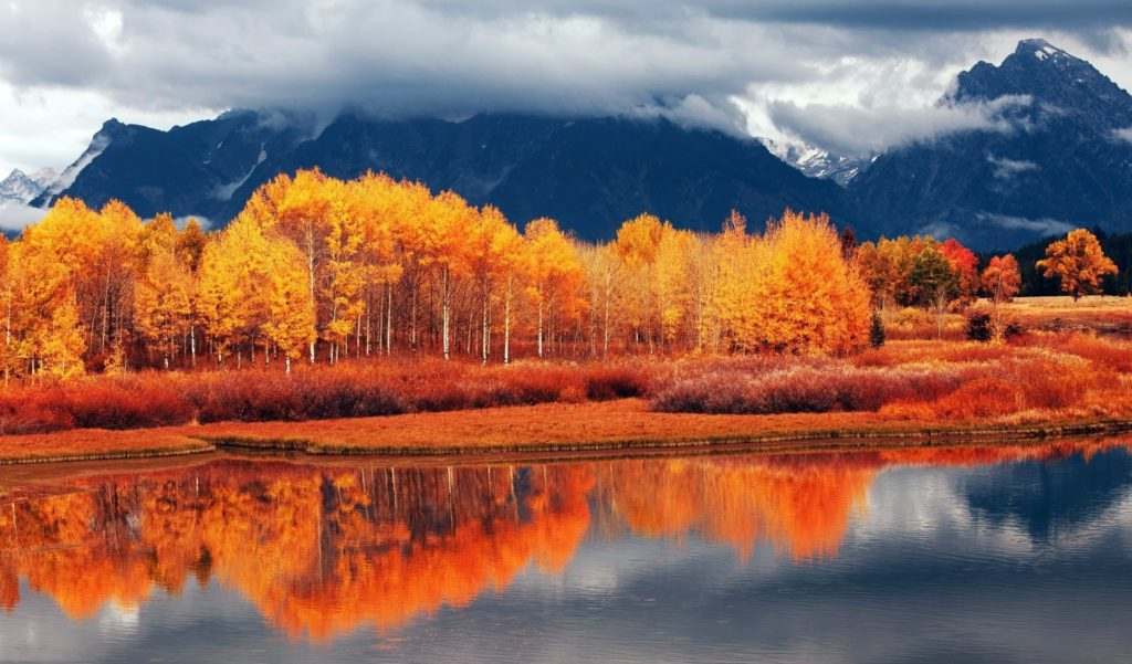 Autumn Mountain Wallpapers For Android.