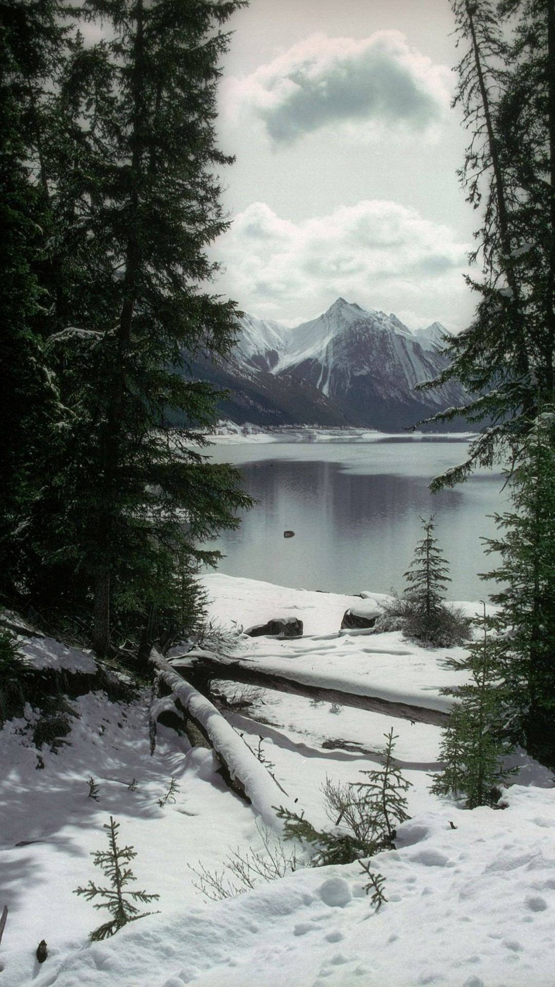 Free Download Winter Wallpaper for Iphone.
