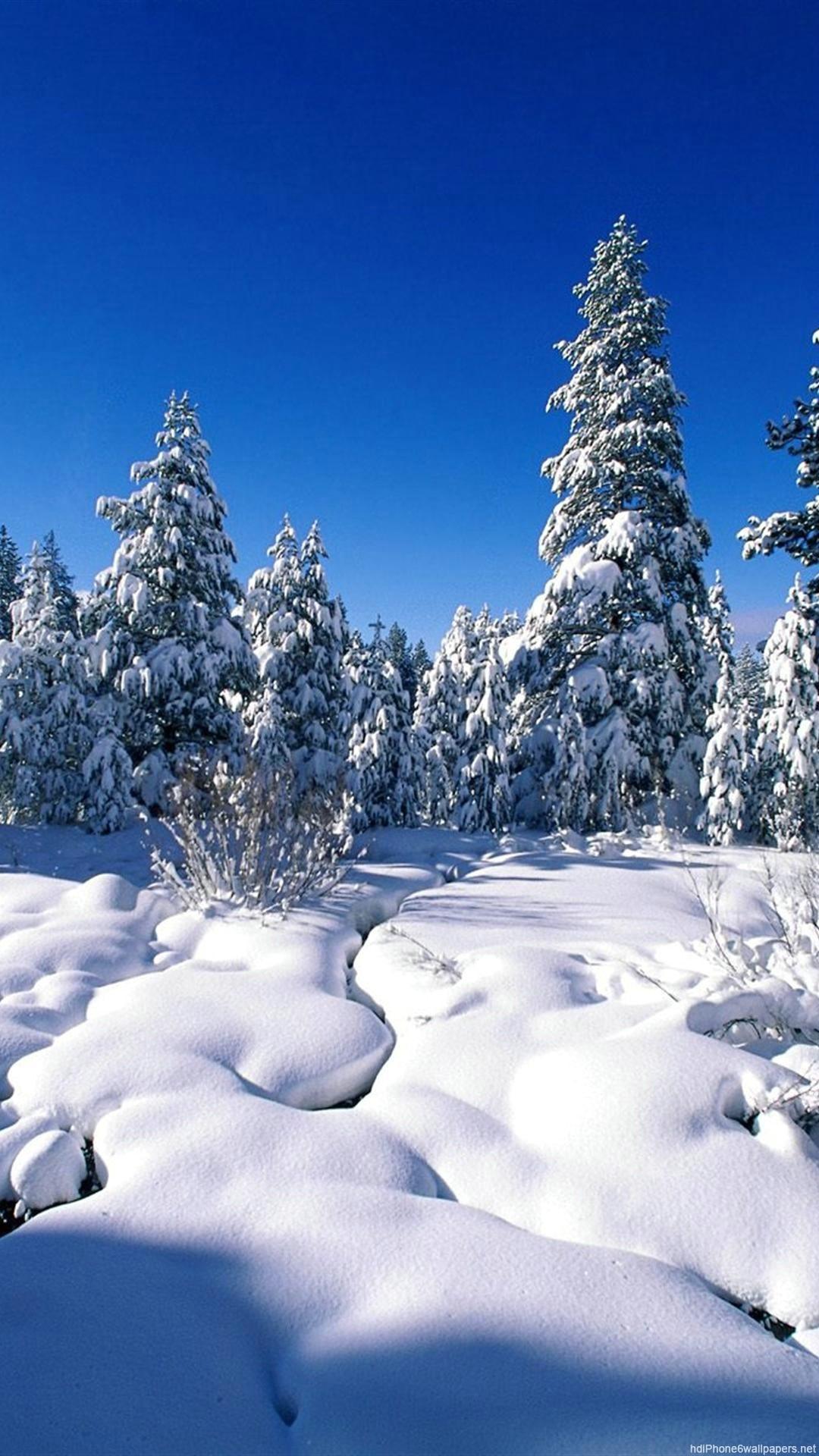 HD winter nature iphone 6 wallpaper
