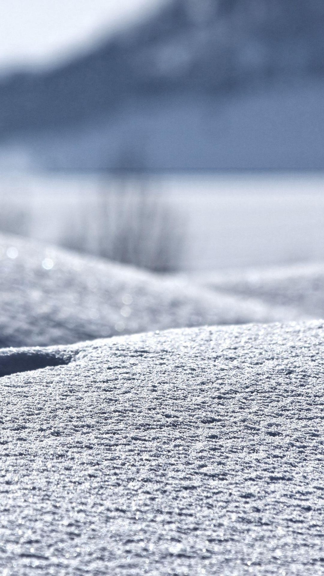Winter In My Backyard iPhone 6 Plus HD Wallpaper …