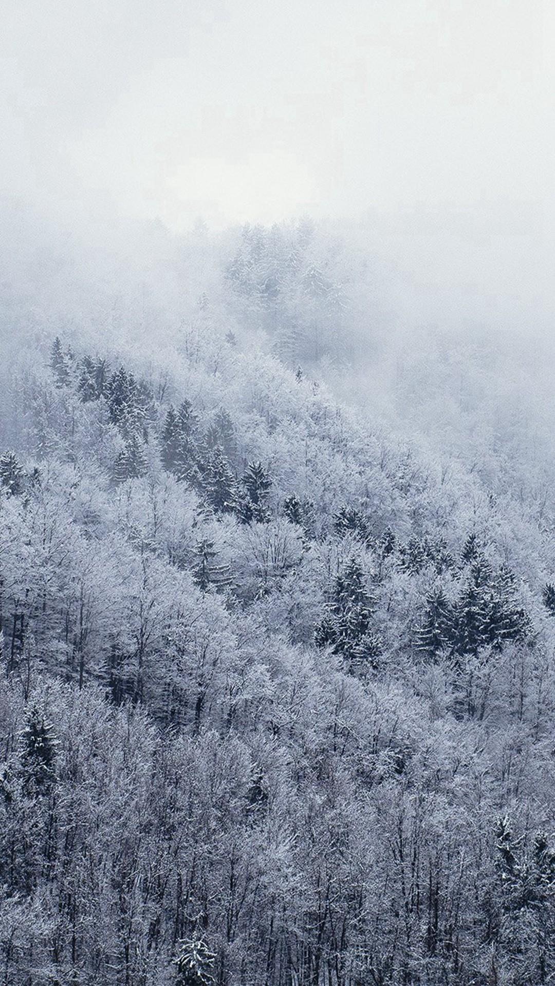 Mountain Wood Winter Christmas White iPhone 8 wallpaper
