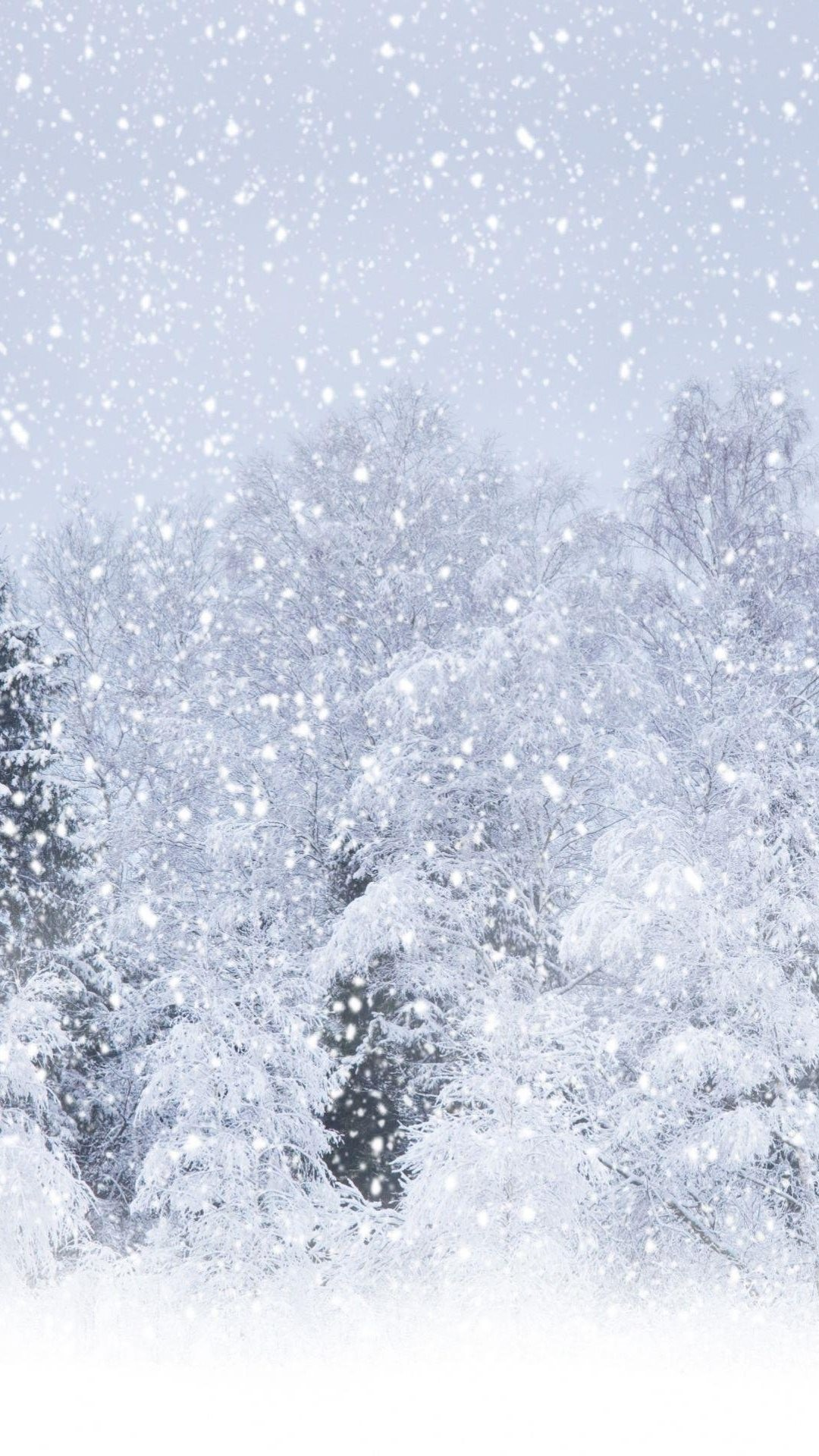 The most beautiful winter wallpapers for iphone