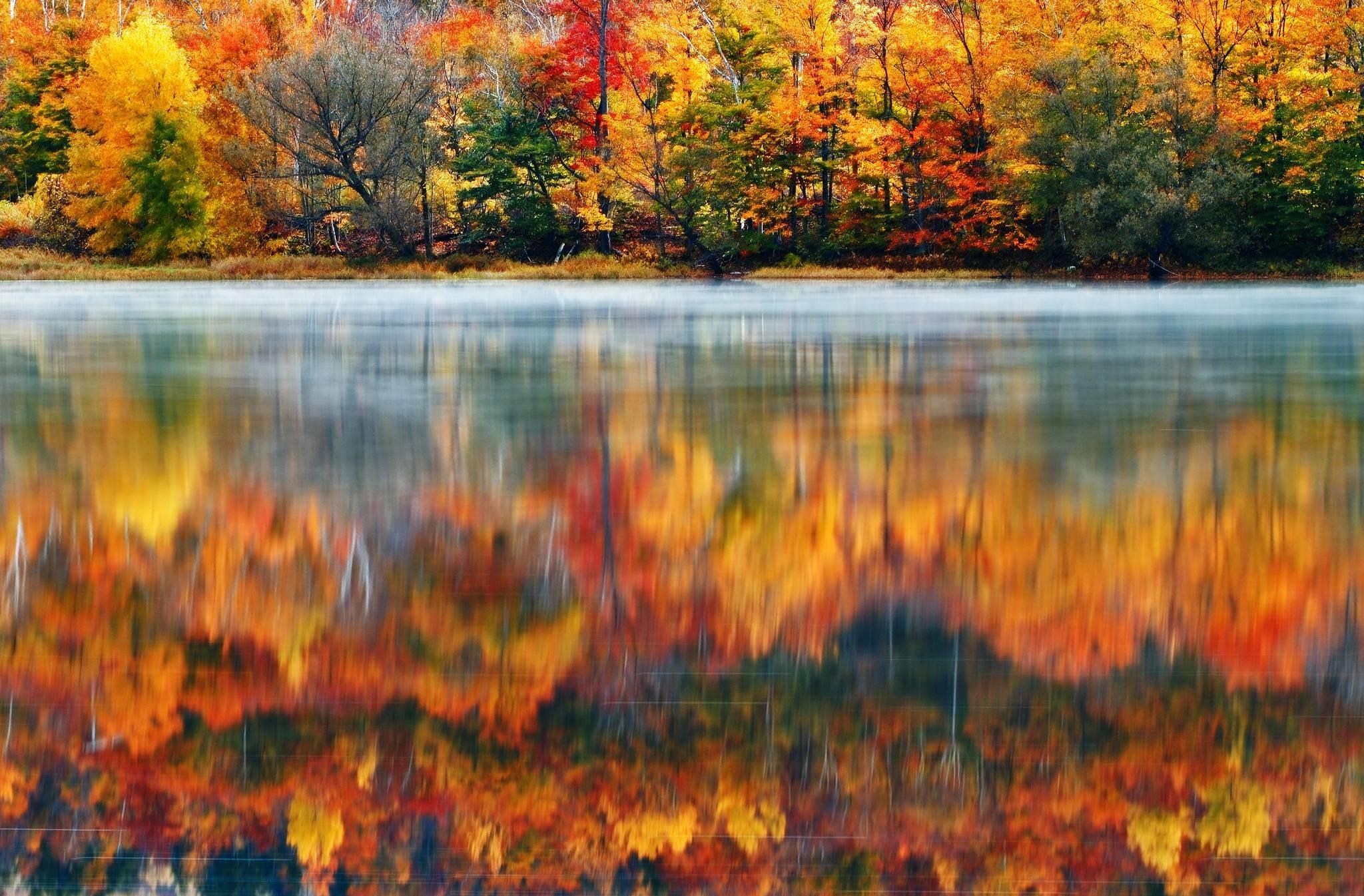 Wallpaper usa, new england, new hampshire, nature, morning, lake .