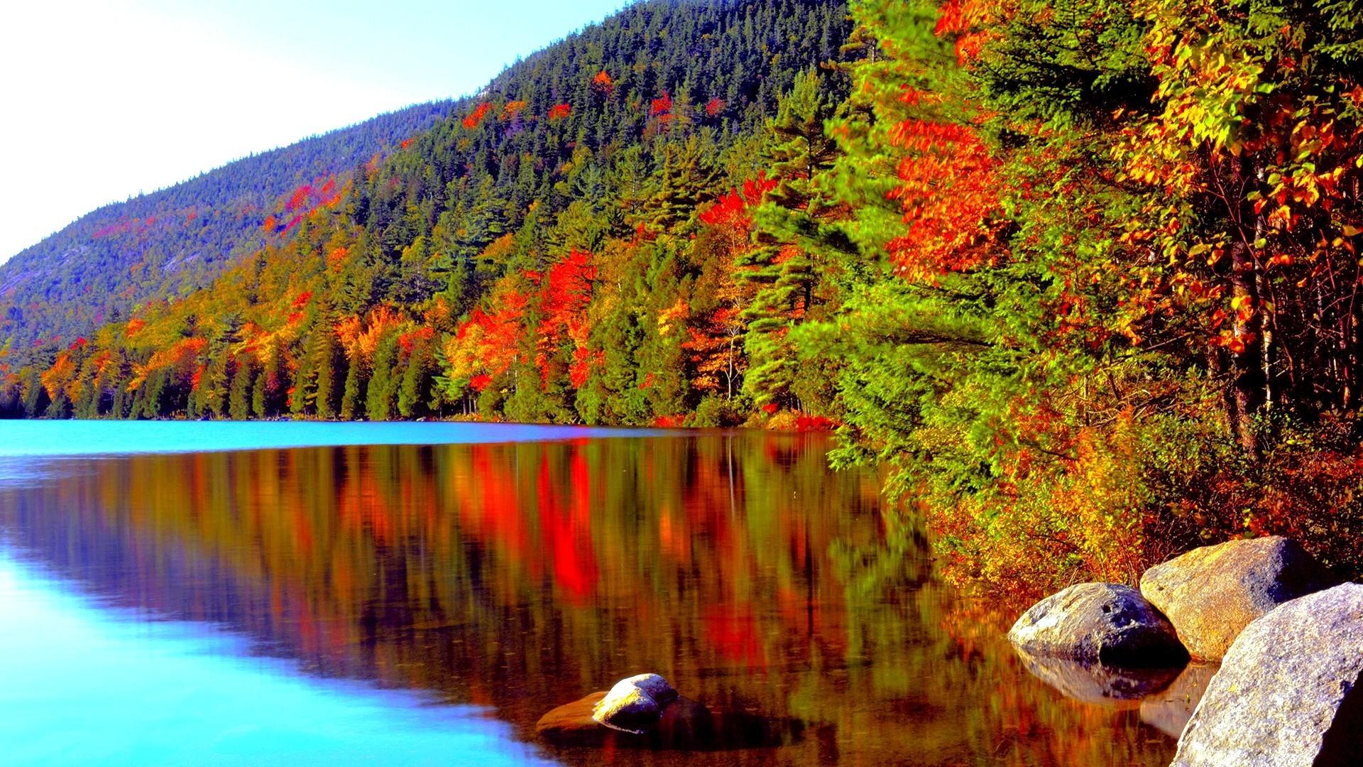 LAKE AUTUMN Forest Foliage Conifer Fall Color Acadia National Park Crater  Desktop Backgrounds Detail