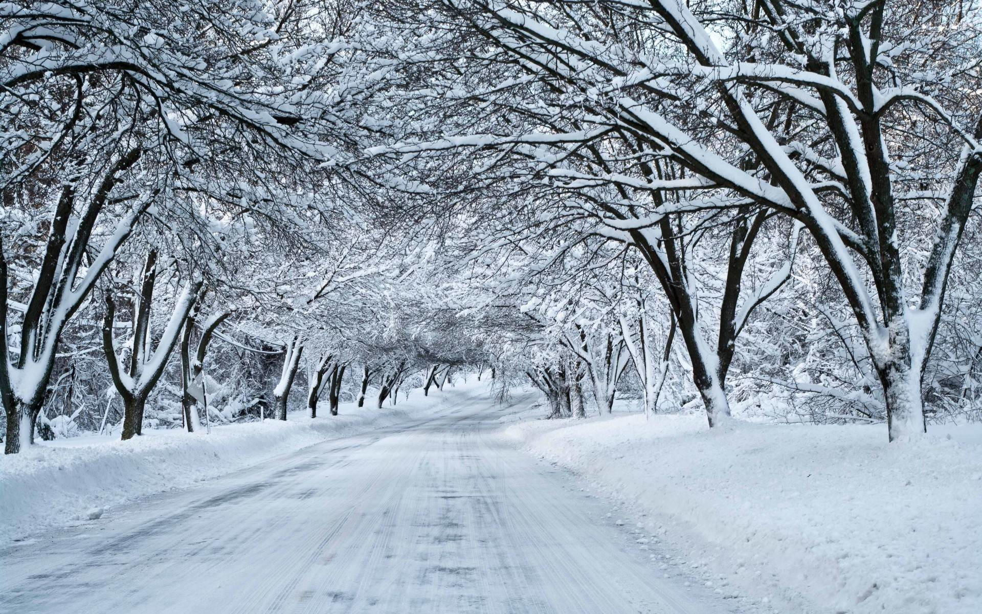 Snow Day HD Wallpaper For Desktop Background – Beraplan.