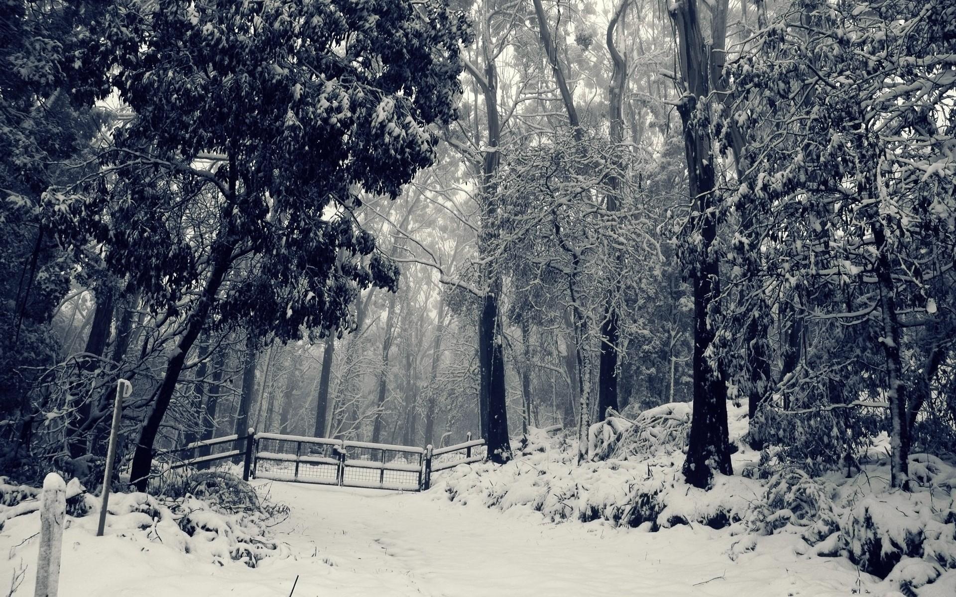snow desktop backgrounds. Â«Â«