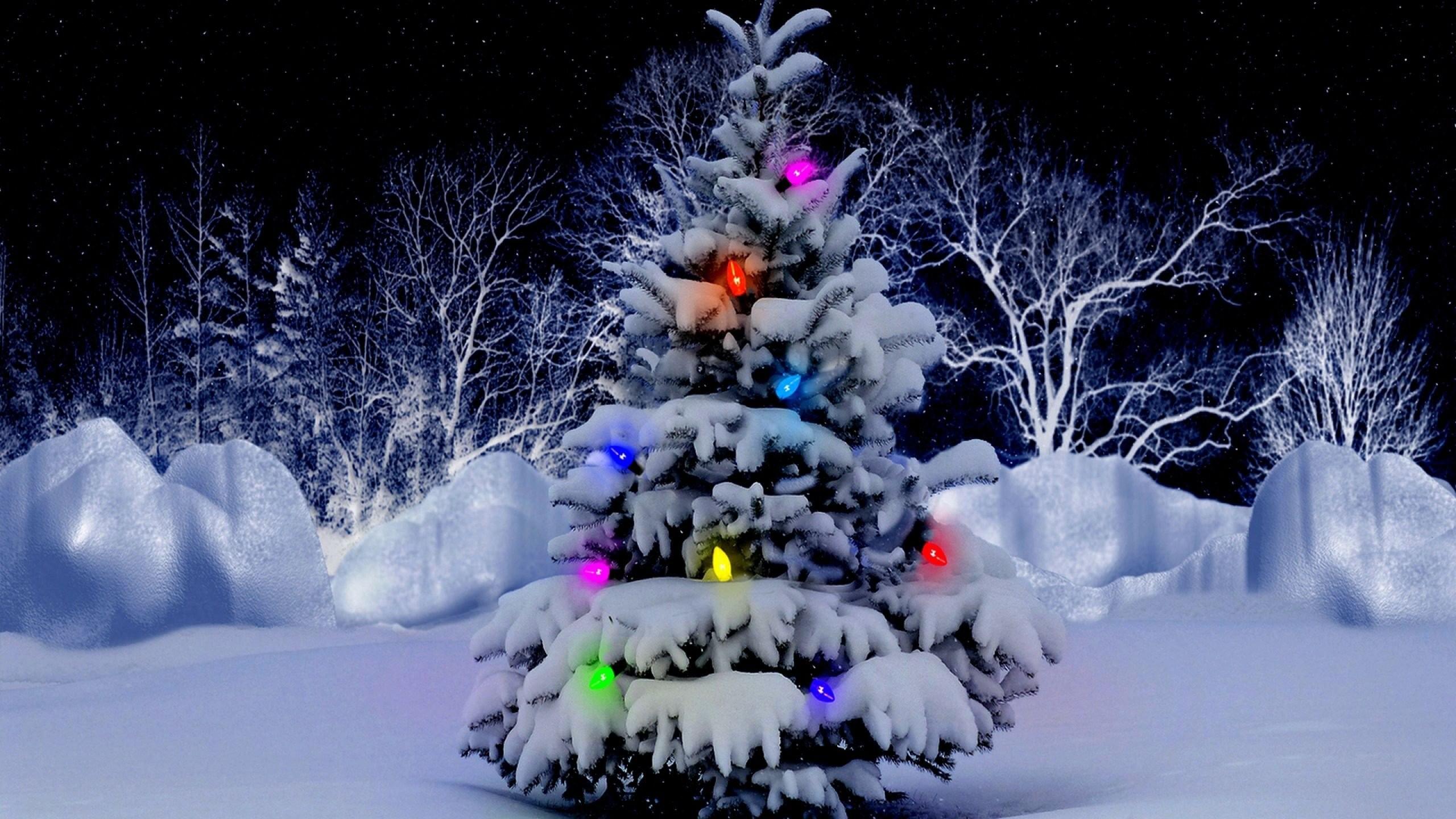 … wallpapers hd; christmas tree snow 532490 walldevil …