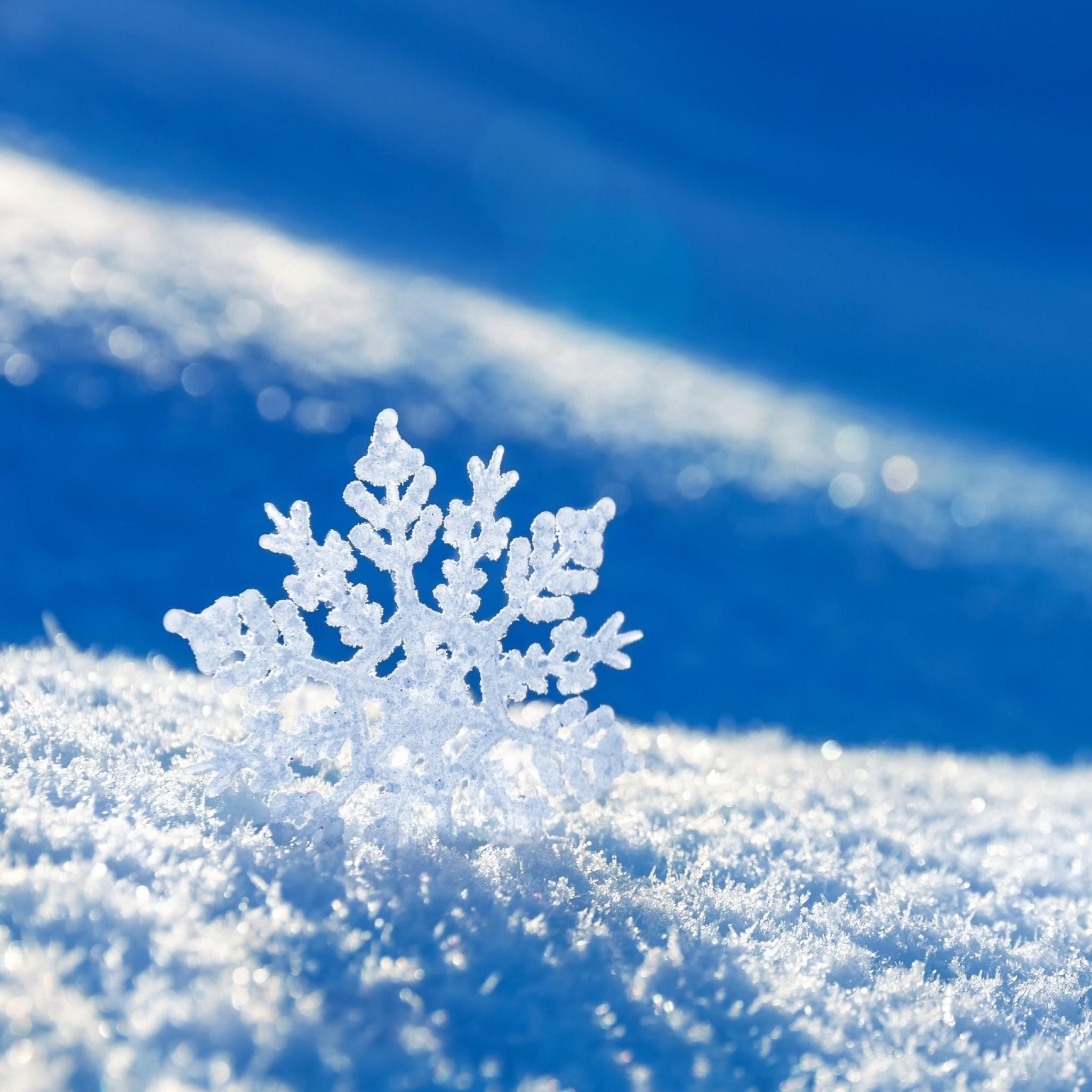 Preview wallpaper snow, snowflake, winter 2048×2048