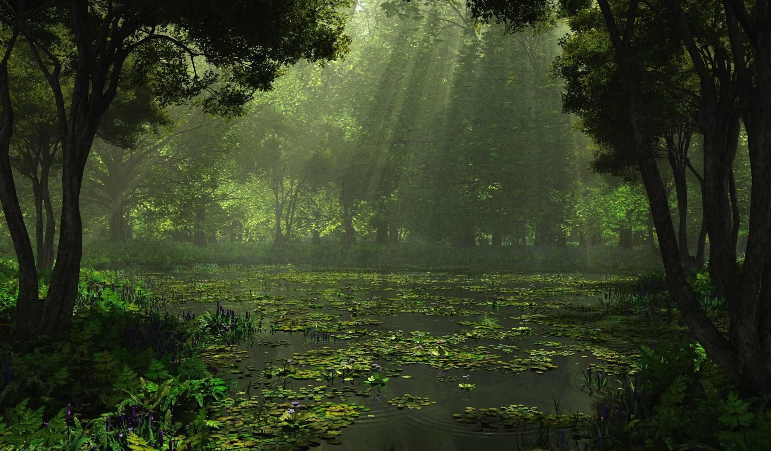 Rain Nature Desktop · Nature Wallpapers HD | EZIBOX · HD Wallpapers