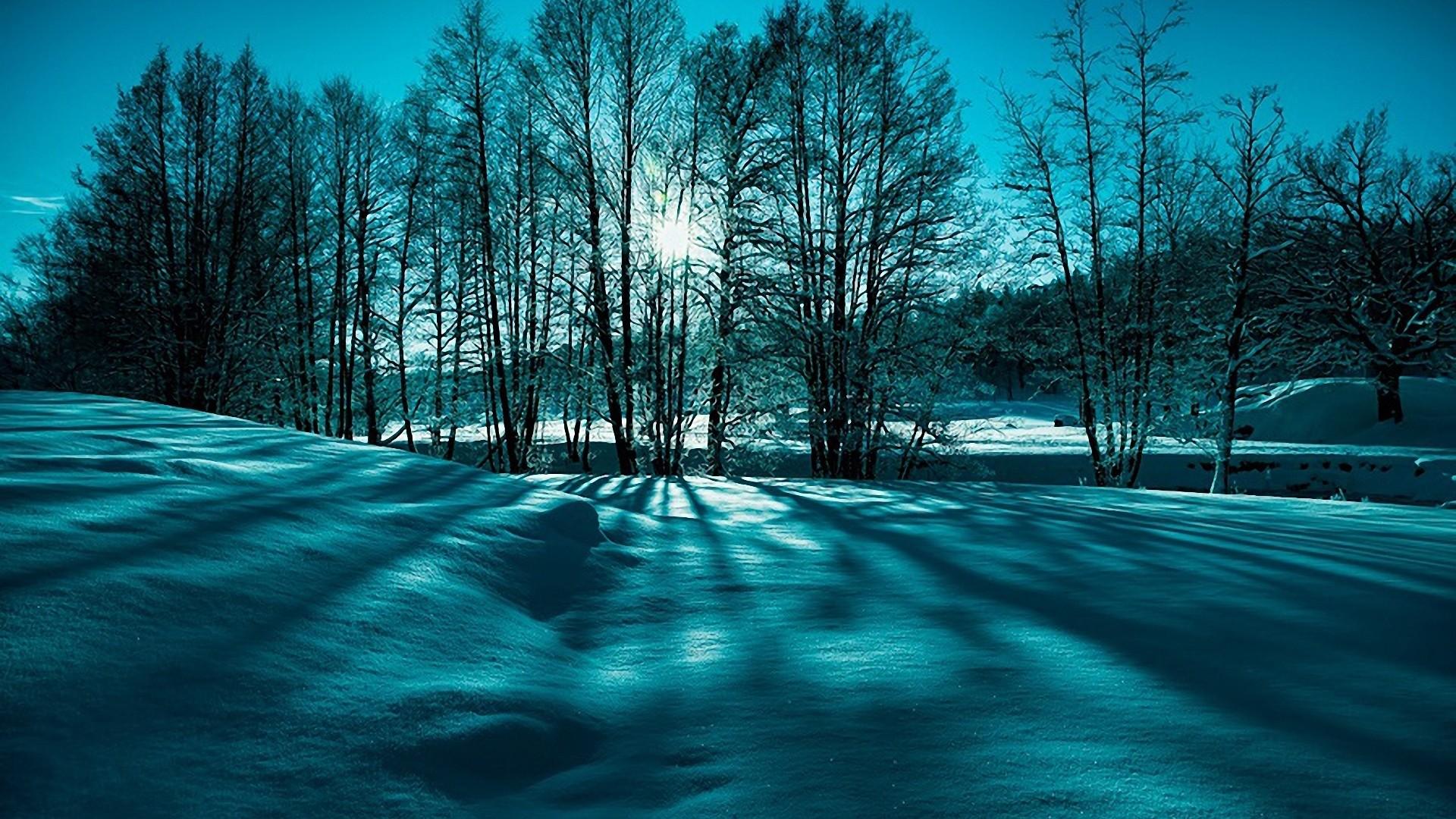 Fantastic Winter Scenery