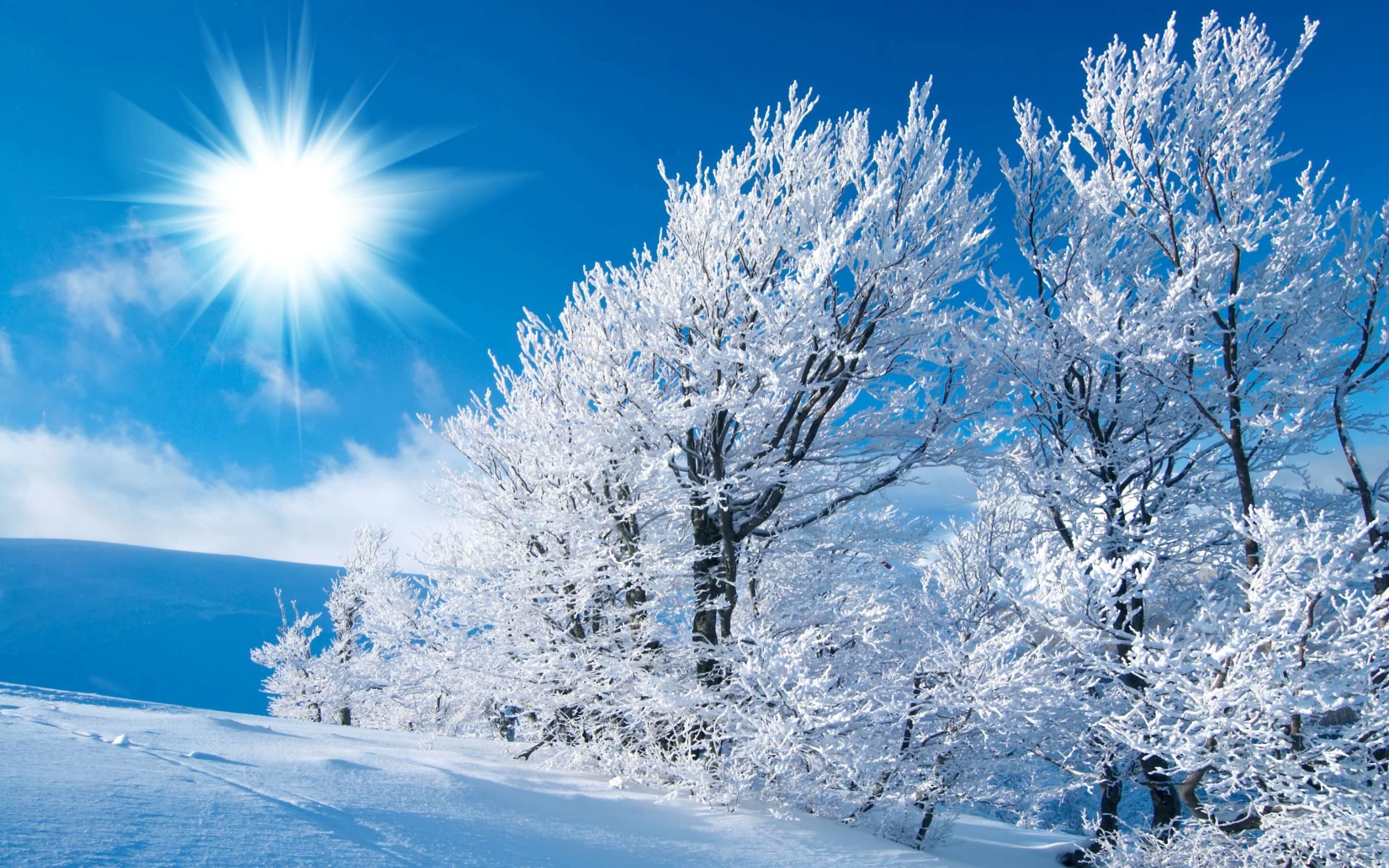 Winter HD Wallpapers